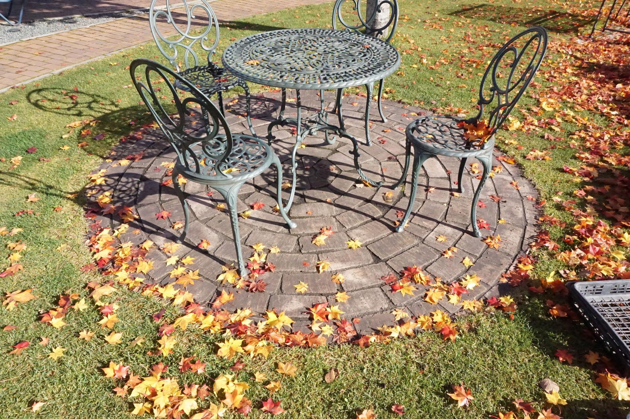 スイートピアガーデンの庭の落葉