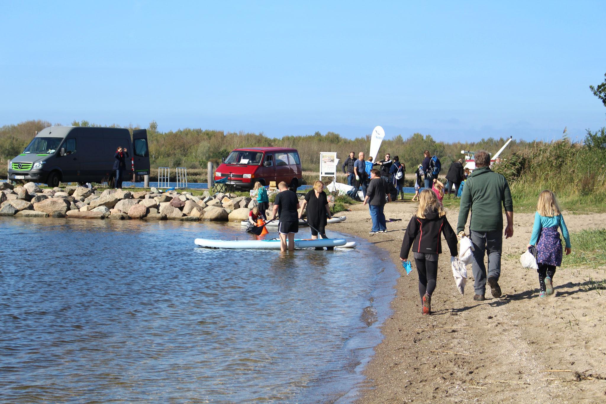 Fleißige Helfer*inen tragen von Mikroplastik bis Rohren Müll am Strand zusammen. Bildautor: NABU Regionalverband Mittleres Mecklenburg e.V.