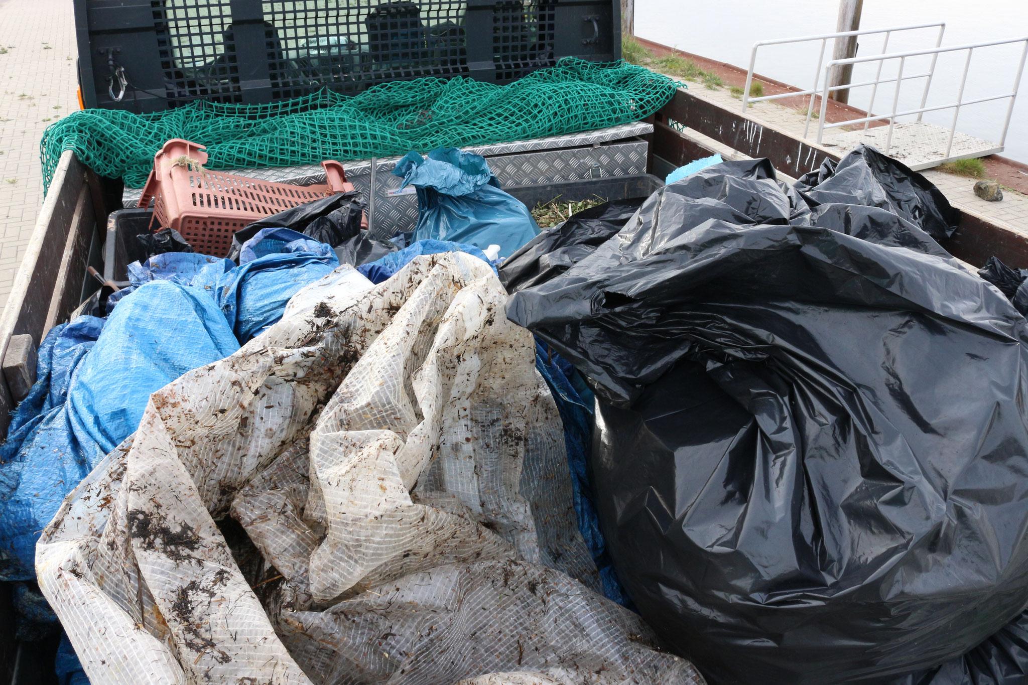 ...wurde der viele Müll abtransportiert. Danke für euren Einsatz!