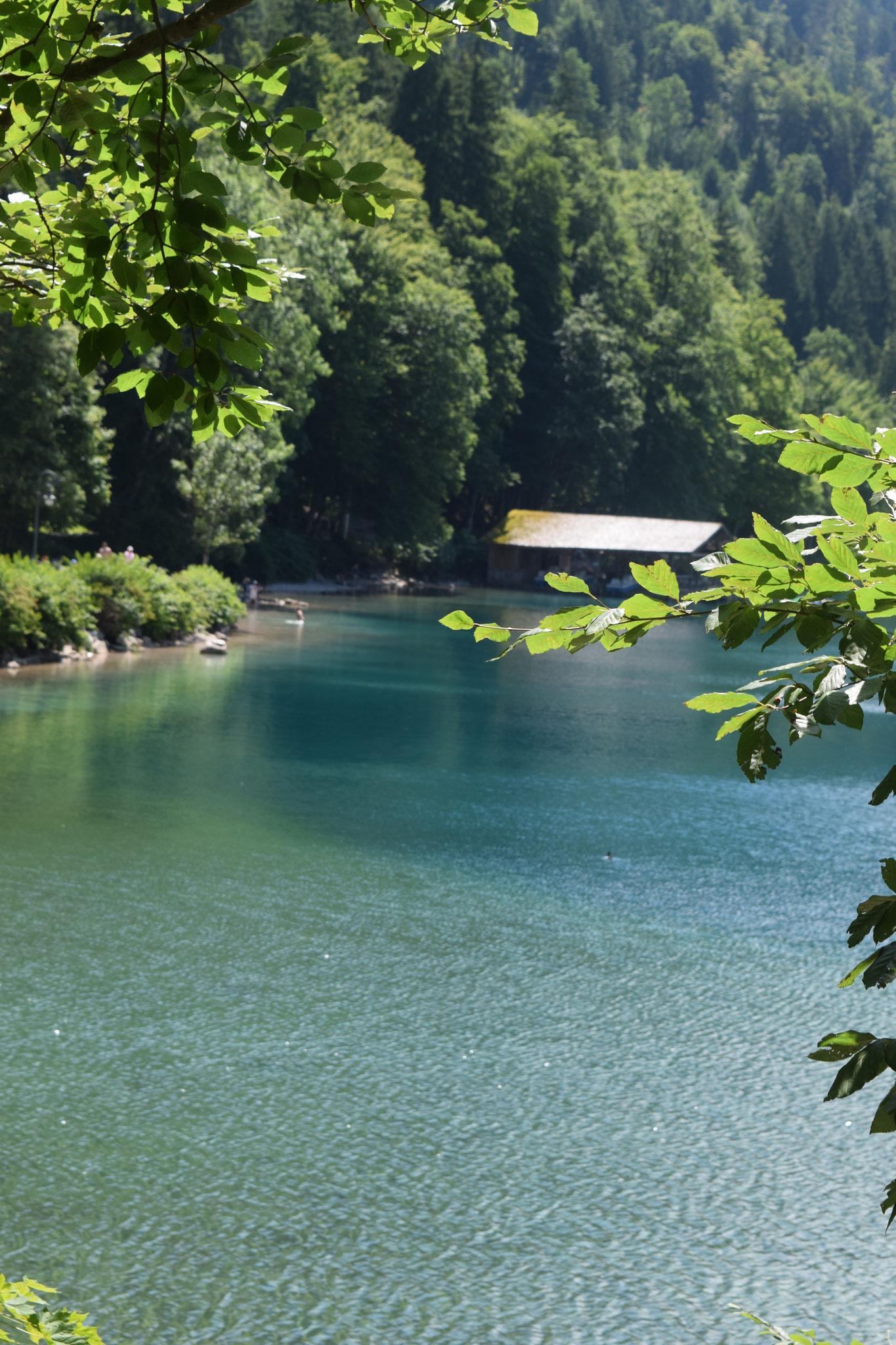 Meine Sommerferien im Allgäu. Mit Badespaß, Bergwanderungen, Schloss Neuschwanstein und den Alpsee.