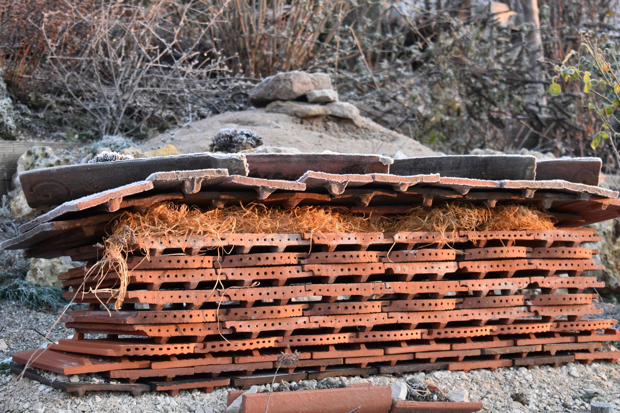 Ziegelmauer für Mauerbienen und co. (Foto: H. Seiß)