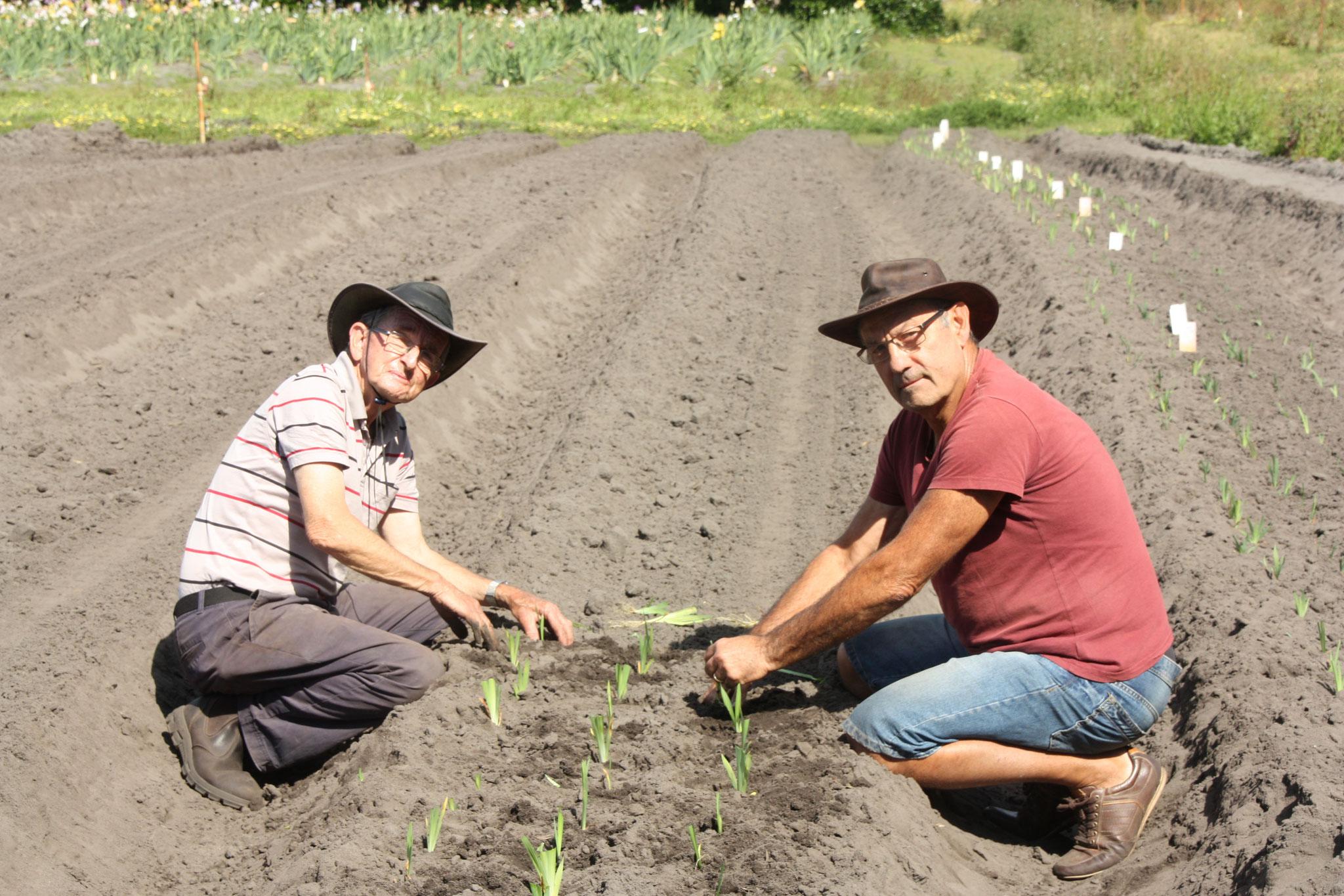 Plantation des semis de Barry