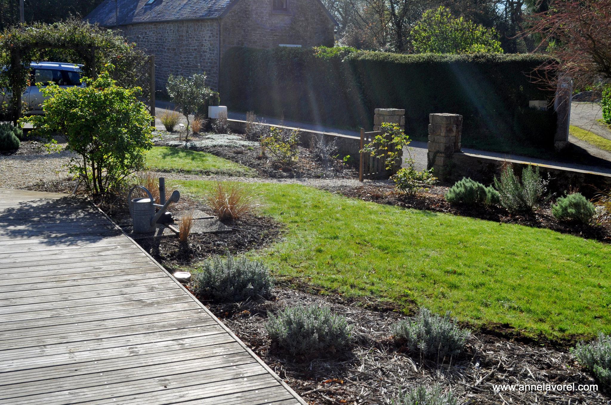 Massif d'arbustes à baies, de rosiers, de plantes aromatiques et de graminées.