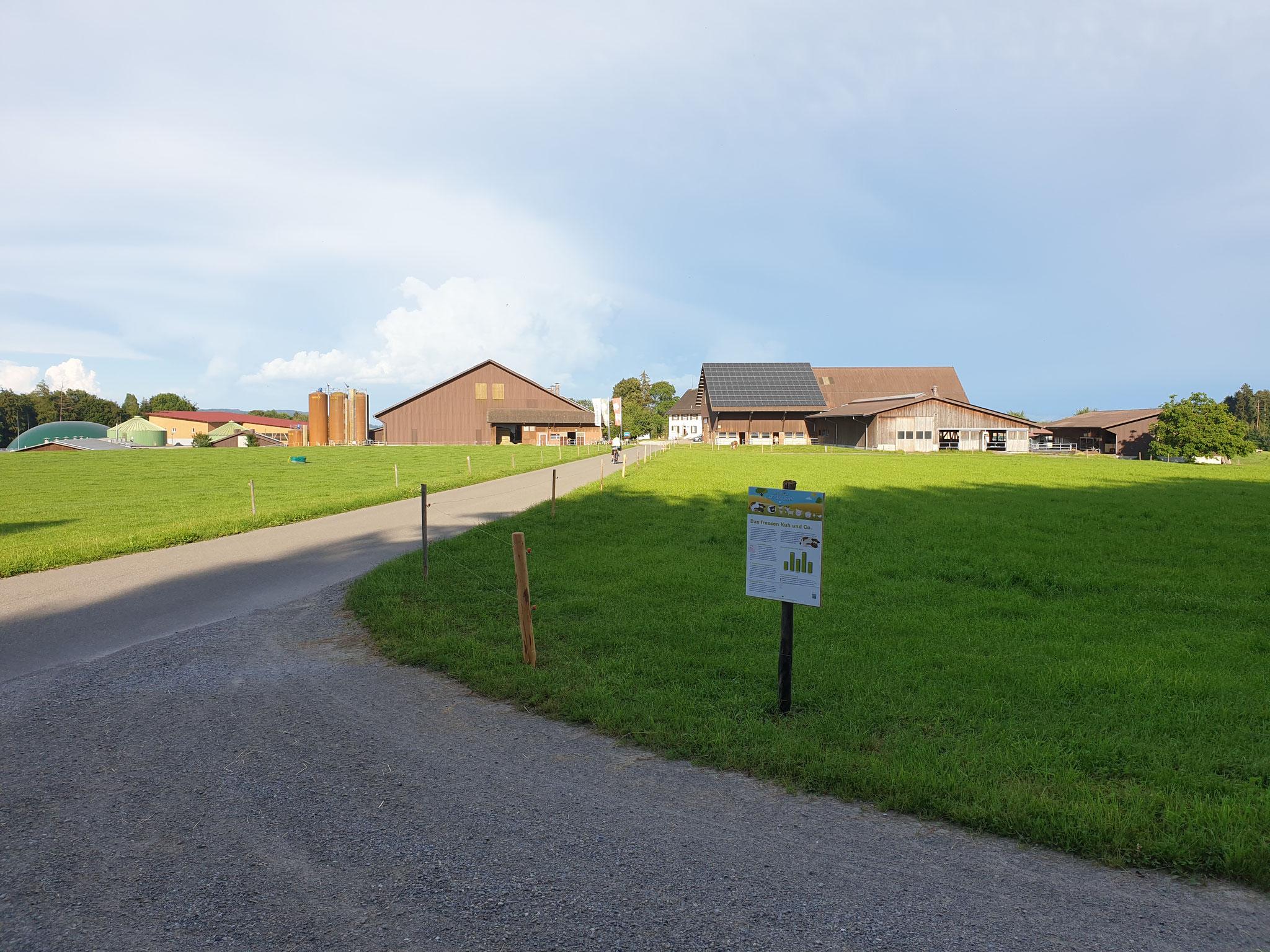 Strasse zur Ortschaft Tilsit
