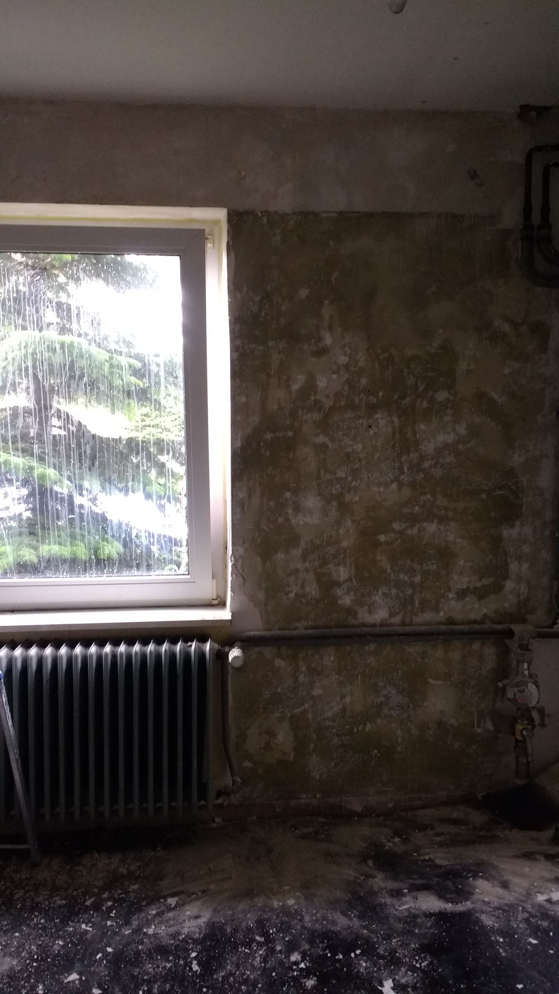Das Fenster. Im Geschäftsbetrieb wird es fast immer offen sein, damit der feuchte Spüldampf gleich rausziehen kann.