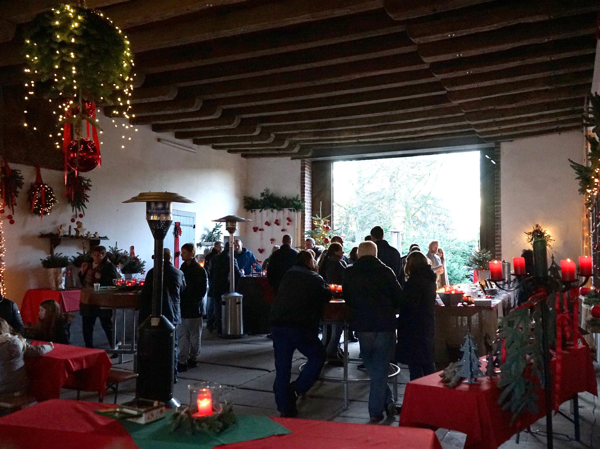 Dortmund Weihnachtsbaum Kaufen.Arche Hof Gut Vellinghausen Dortmund Die Schönsten Weihnachtsbäume