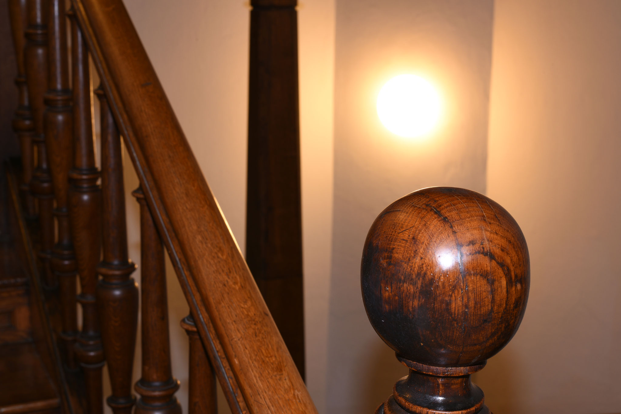 geformtes Holz 1