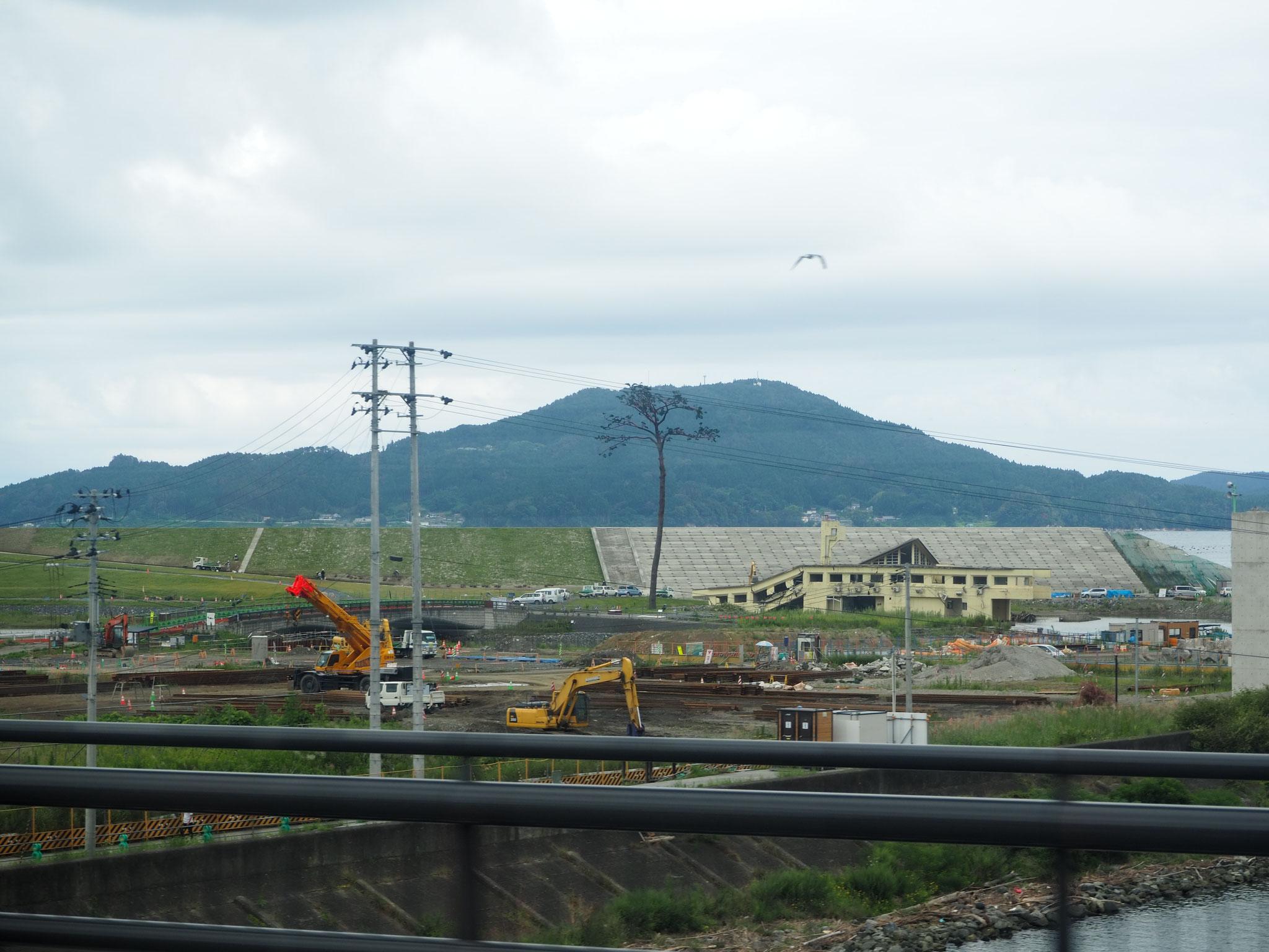車窓から眺める陸前高田の奇跡の一本松