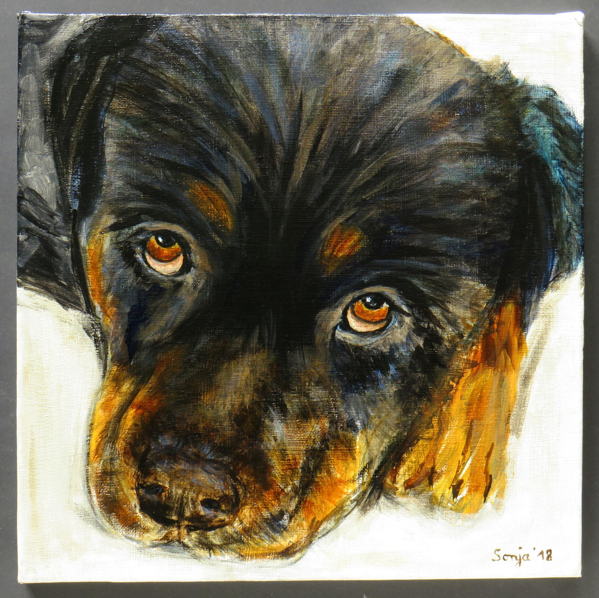 """Peppi"", Acryl auf Leinwand, 30 x 30 cm"