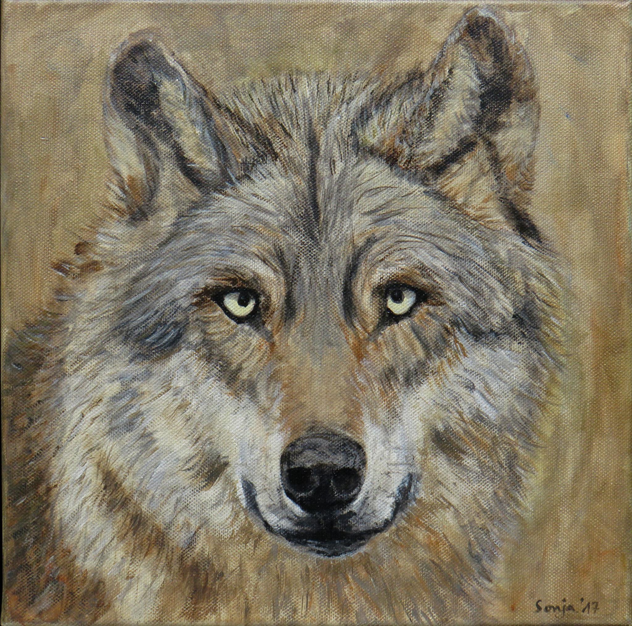 """Wolf"", Acryl auf Leinwand, 30 x 30 cm"