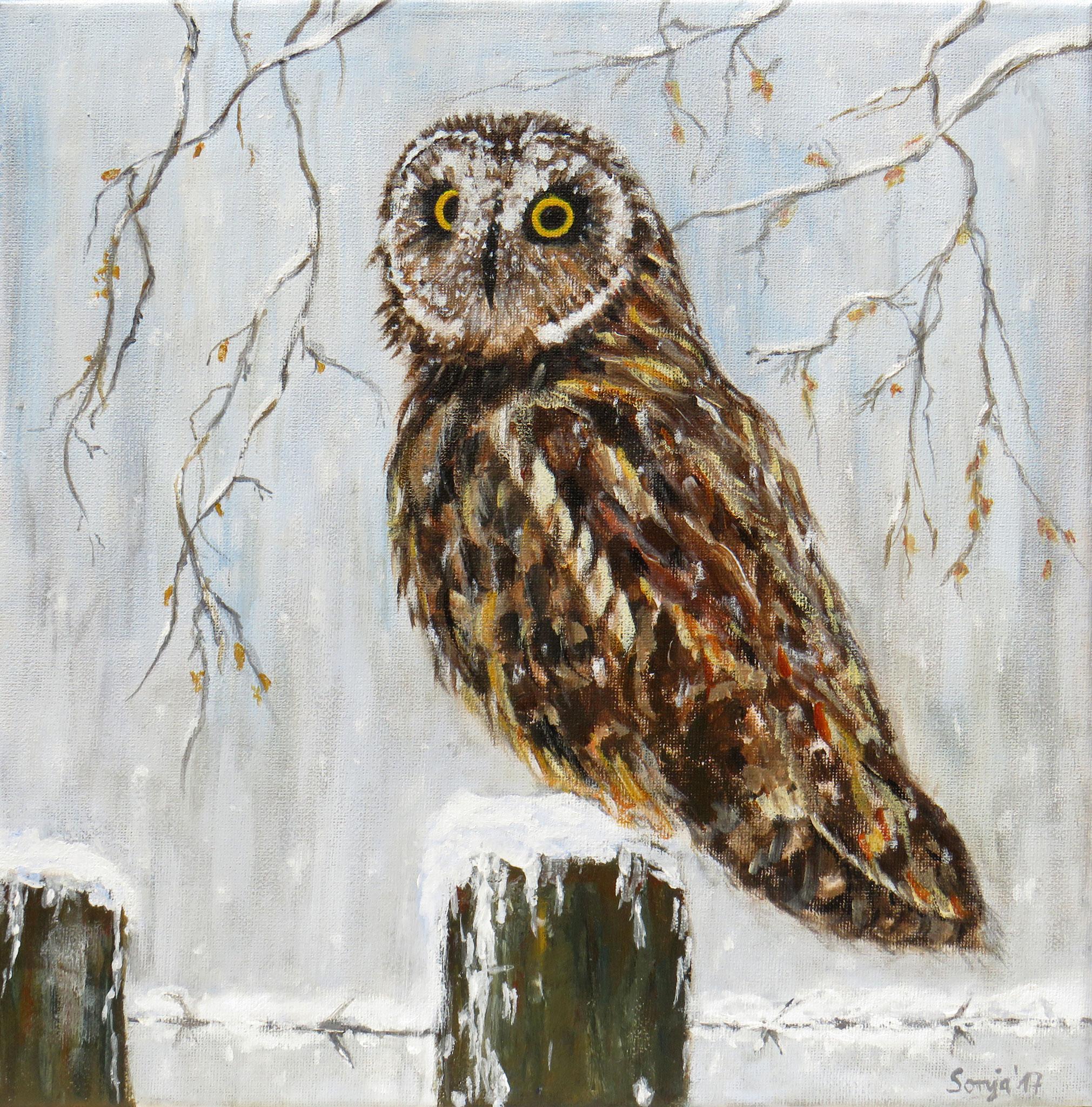 """""""Eule im Schnee"""", Acryl auf Leinwand, 30 x 30 cm"""
