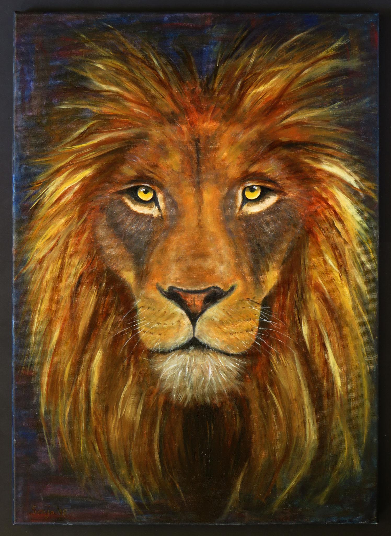 """""""Leo"""", Öl auf Leinwand, 50 x 70 cm"""