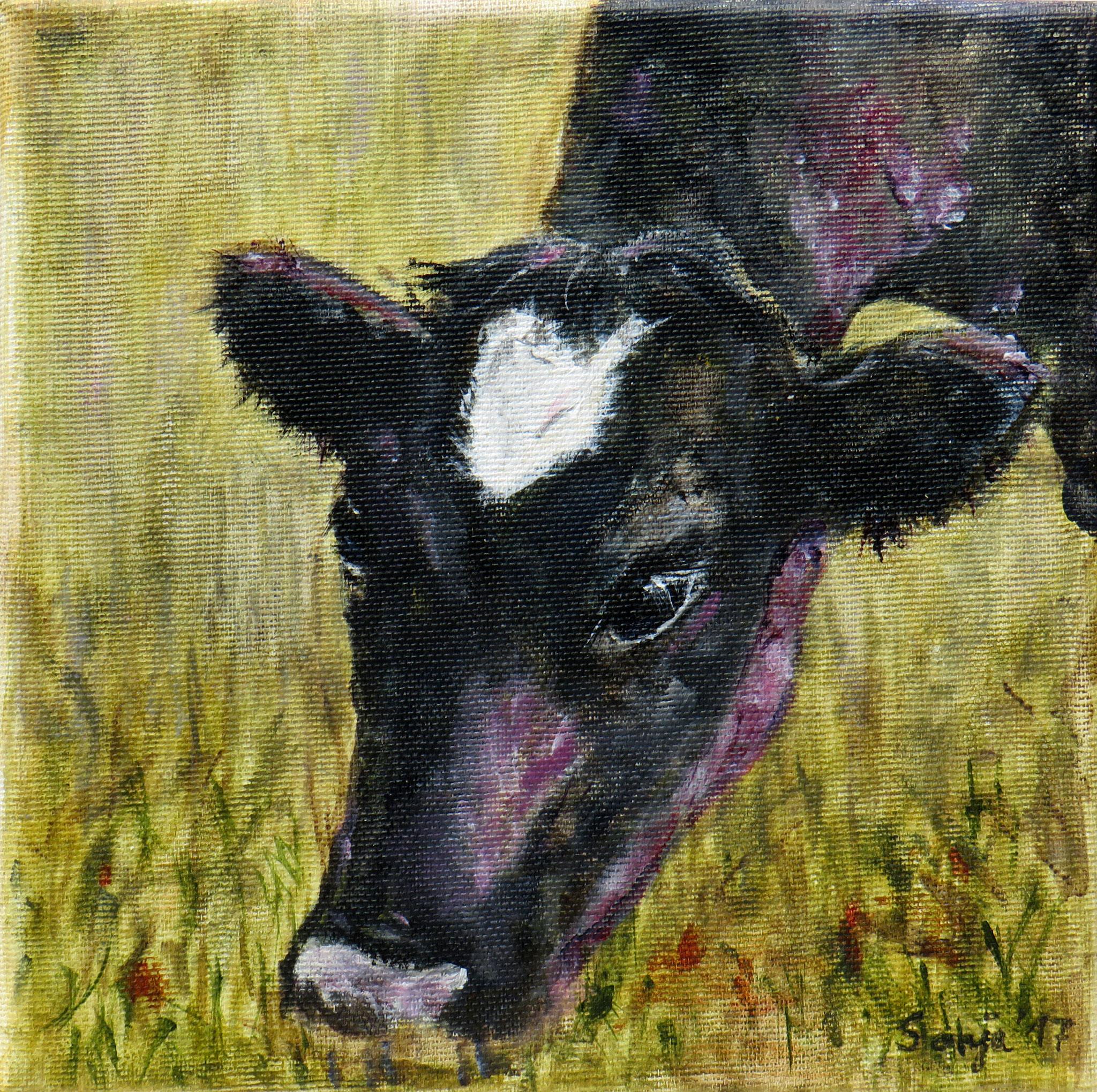 """""""Nachbars Kuh"""", Acryl auf Leinwand, 20 x 20 cm"""
