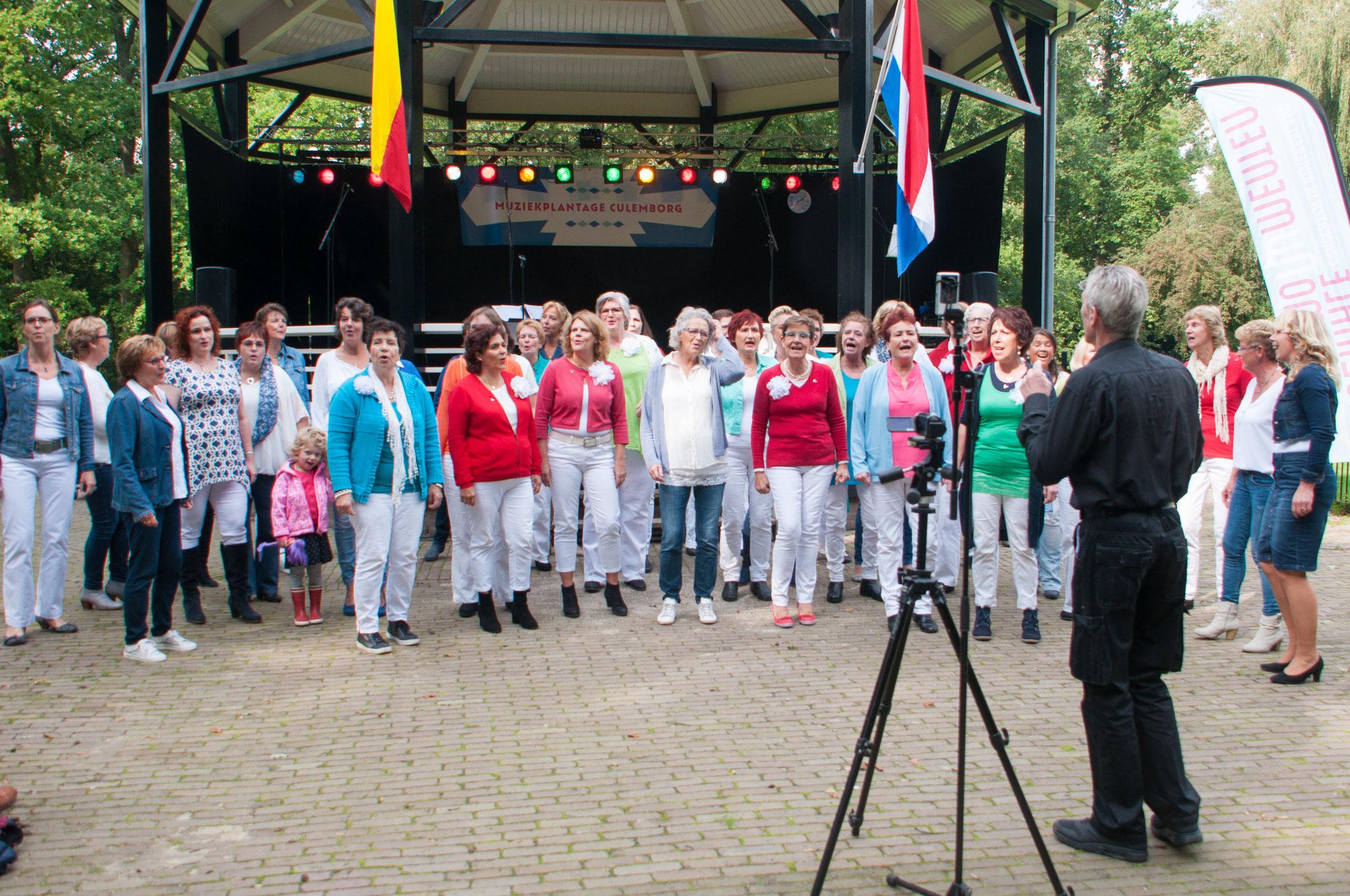 Muziektent de Plantage, Culemborg. 17 september 2017 (samen met Popkoor Nevermind)