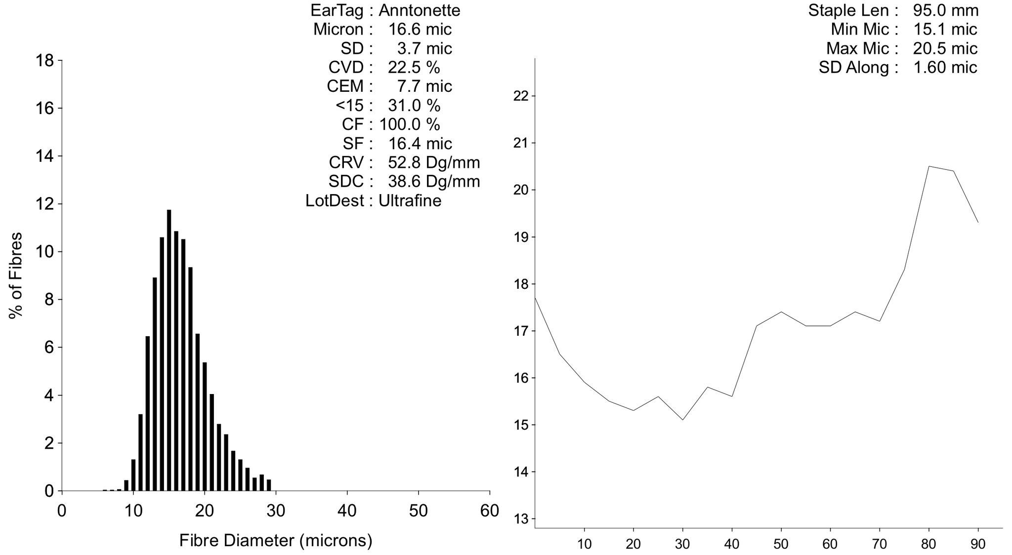 Histogram 2020, 2. Vlies