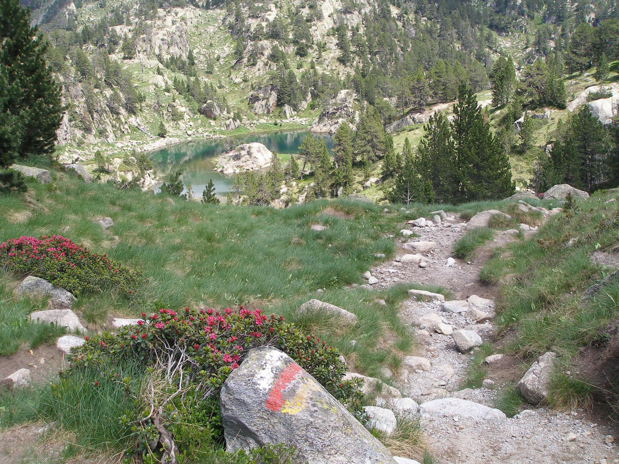 Trekking, Vuelta al Posets