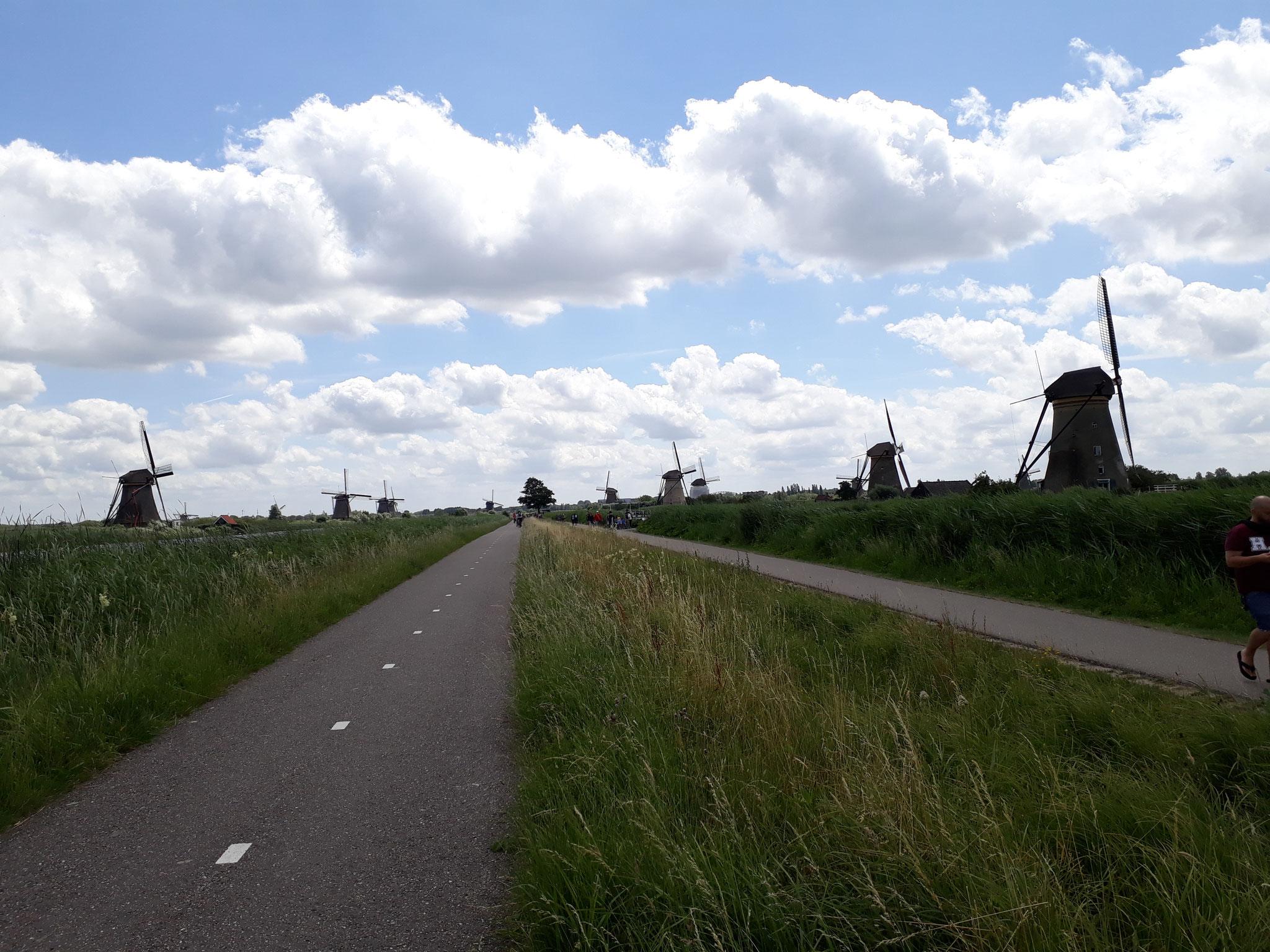 Immer mehr Windmühlen tauchen auf...