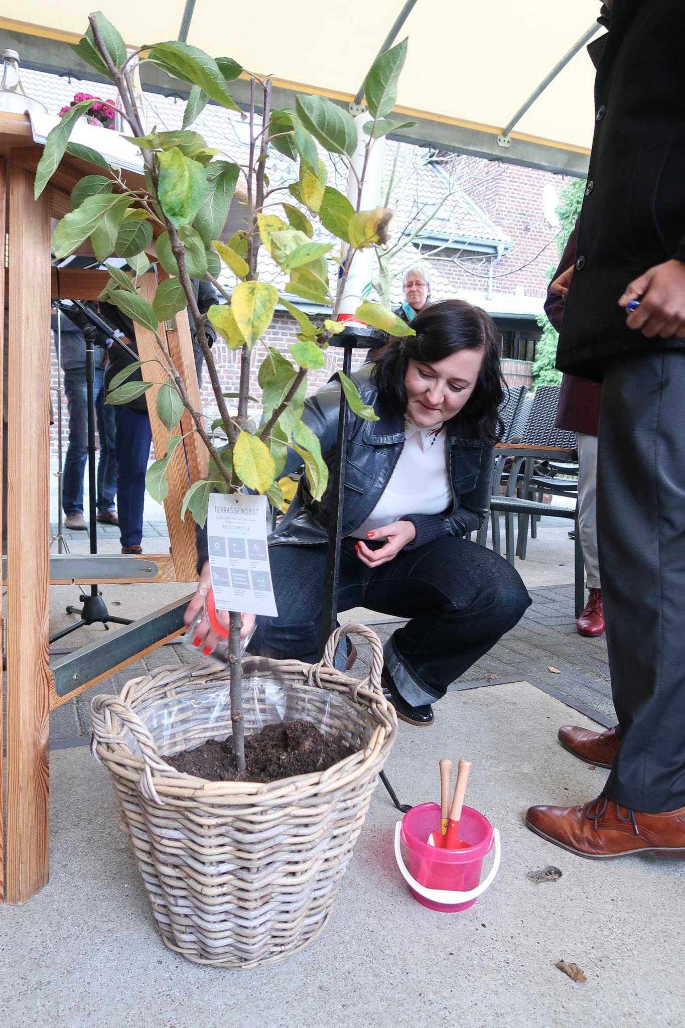 Ein Lebensbäumchen für Emilia, bei ihrem Willkommensfest