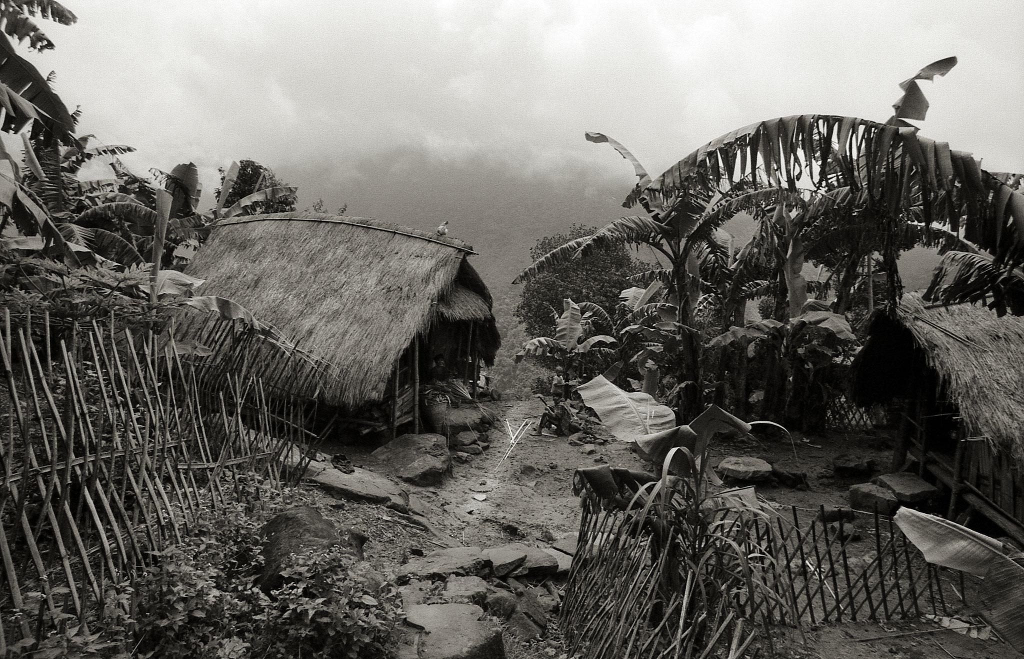 Bambushäuser,