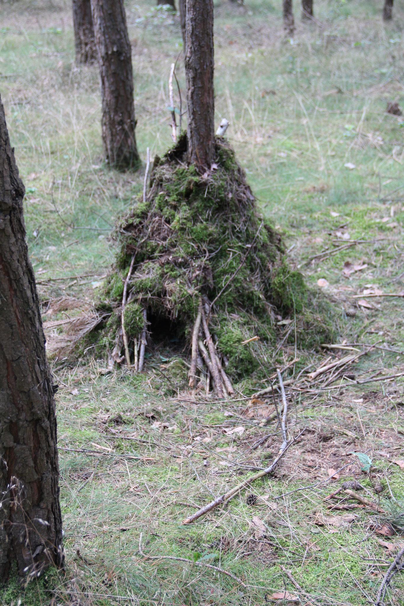 Hier seht ihr eine Igelferienwohnung. Ob da wohl ein Igel drin Wohnt?