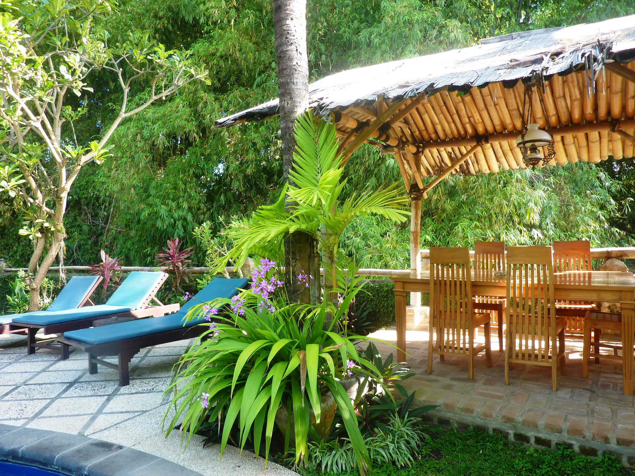 Deck chairs and the bamboo hut