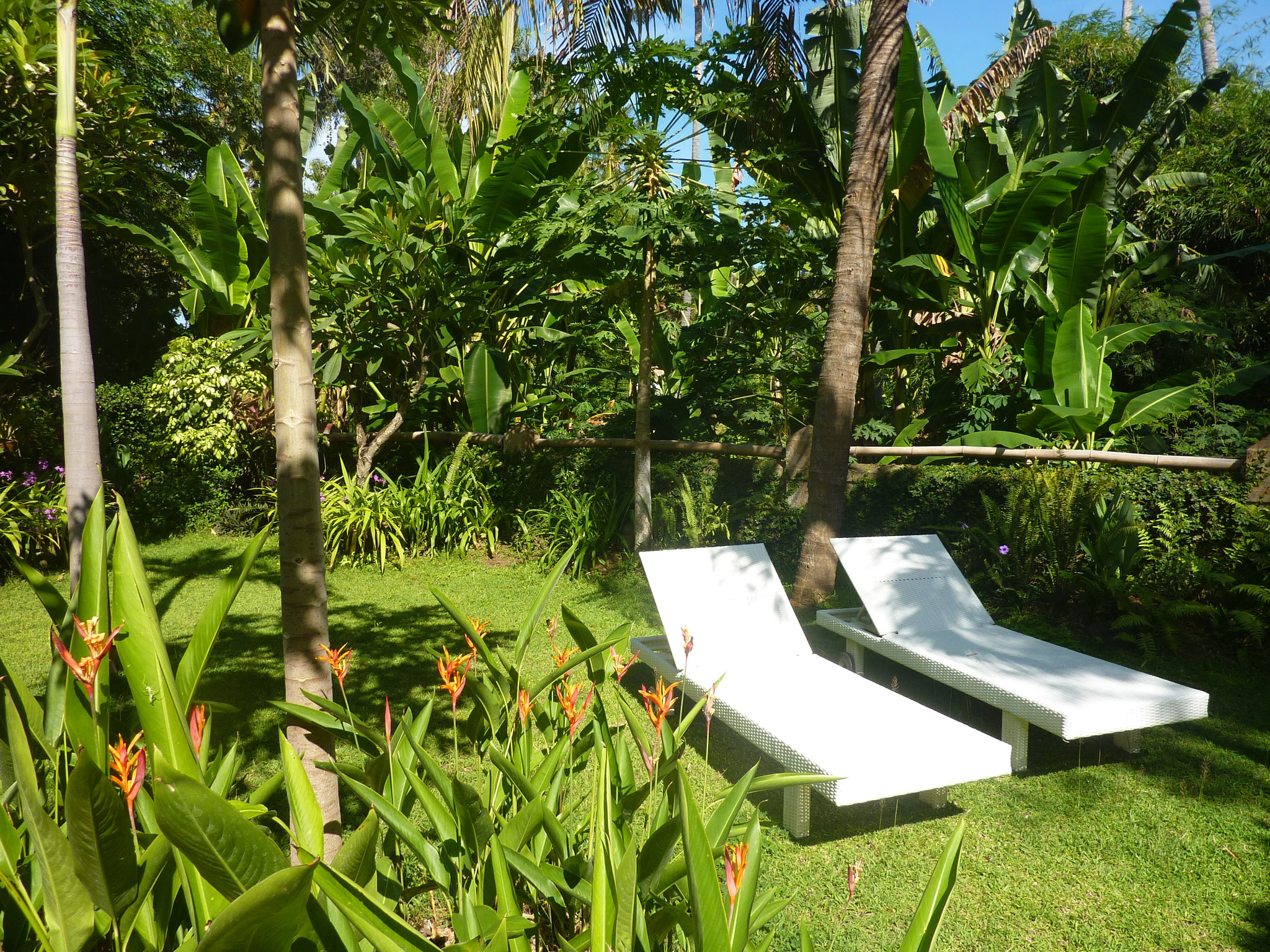 The garden in front of the small bungalow