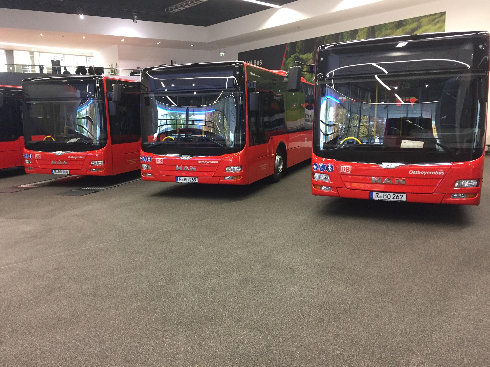 Bus Beschriftung