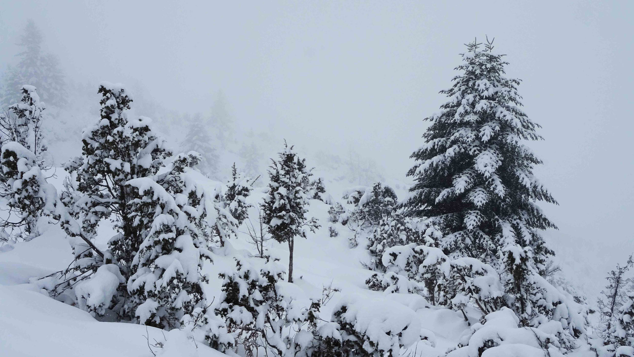 Beau paysage de neige au Hautacam...