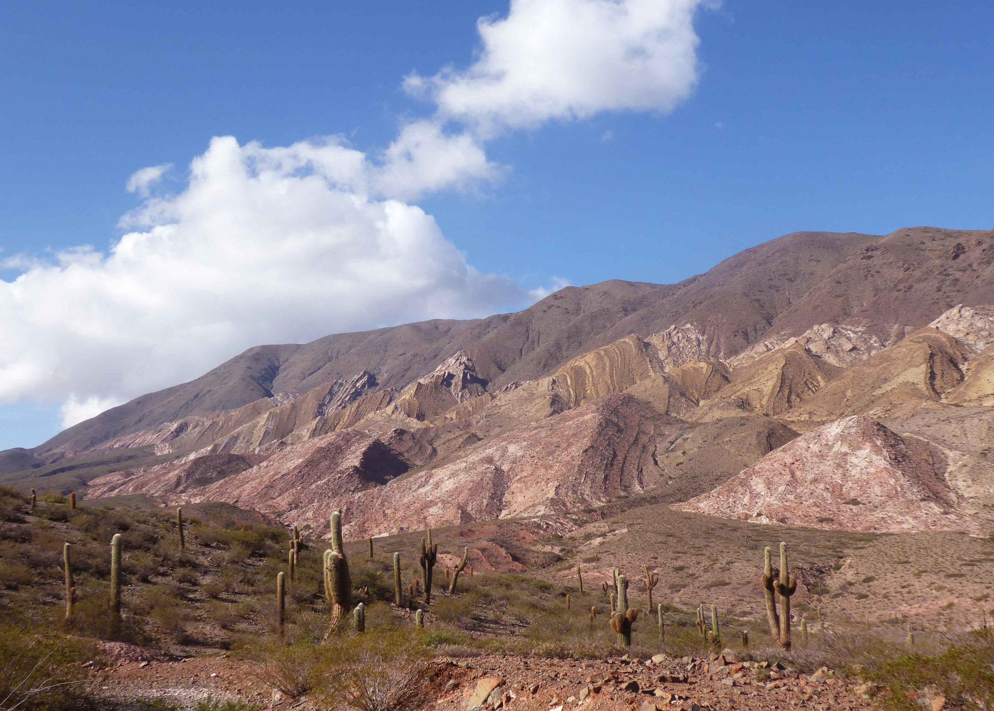 Au long de la route de l'Inca ou Recta Tin Tin, le Cerro Tin Tin (3425 m)