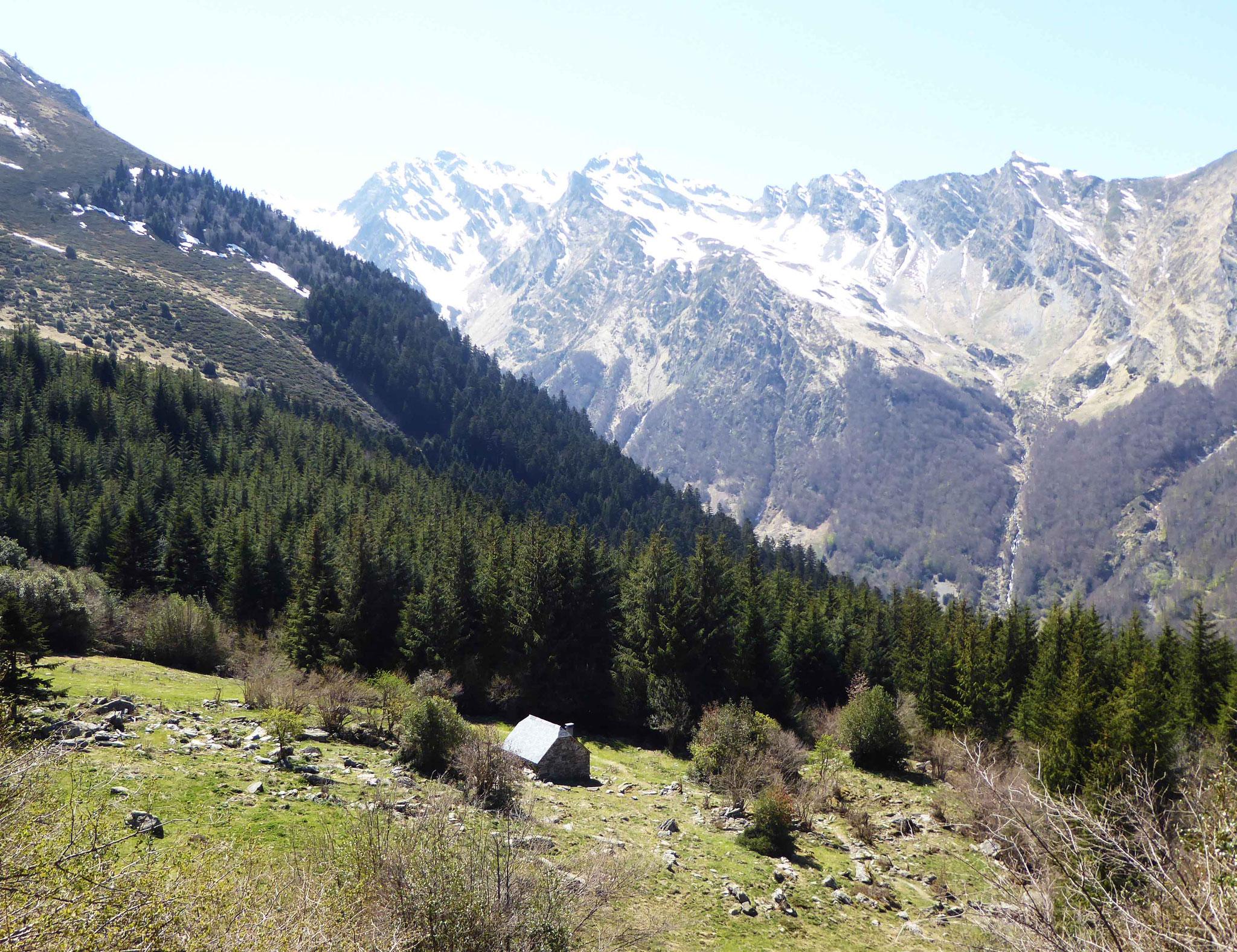 Retour en forêt depuis la cabane d'Arriousec