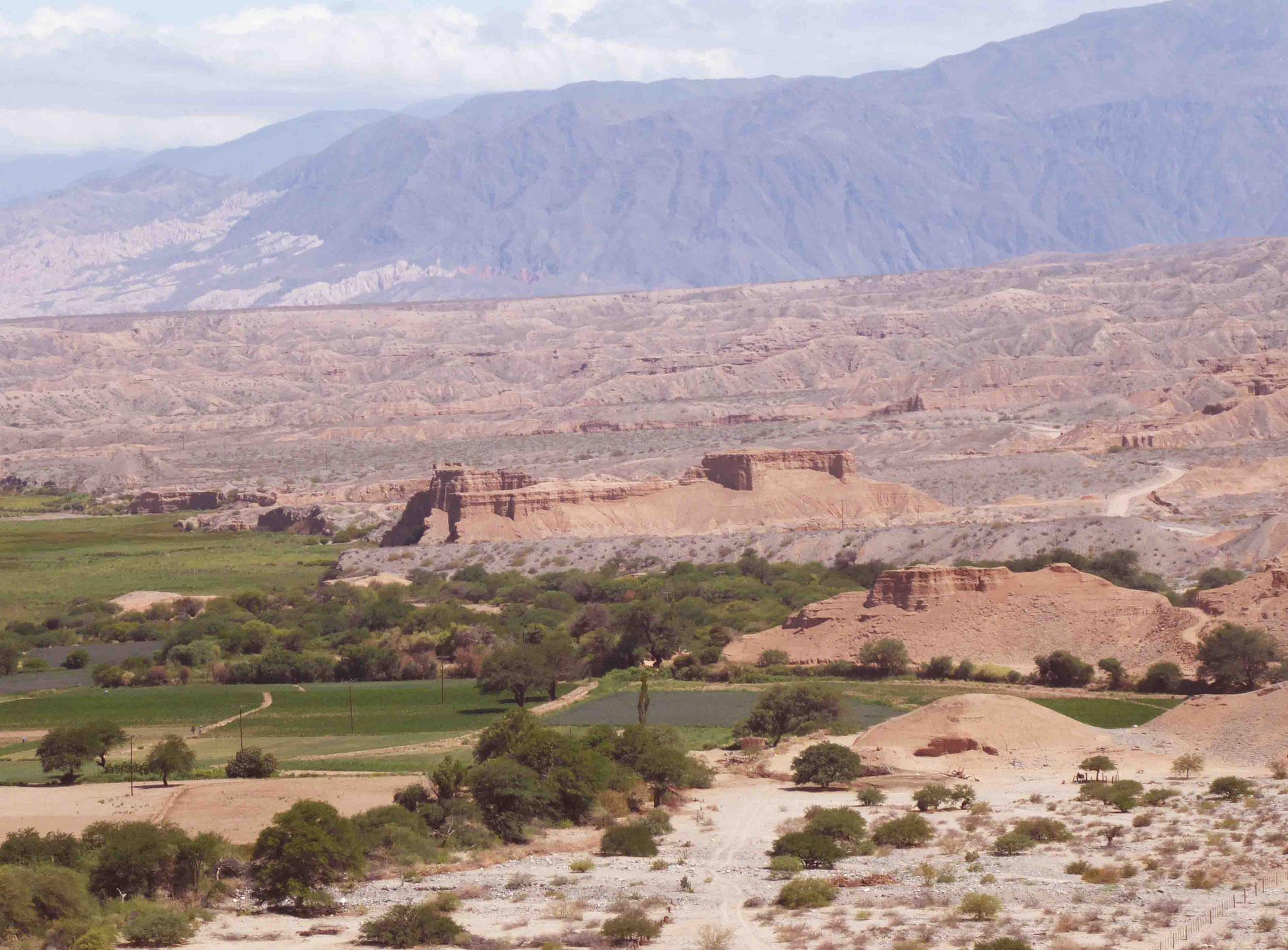 Alternance de terres arides et d'oasis à l'approche de Molinos