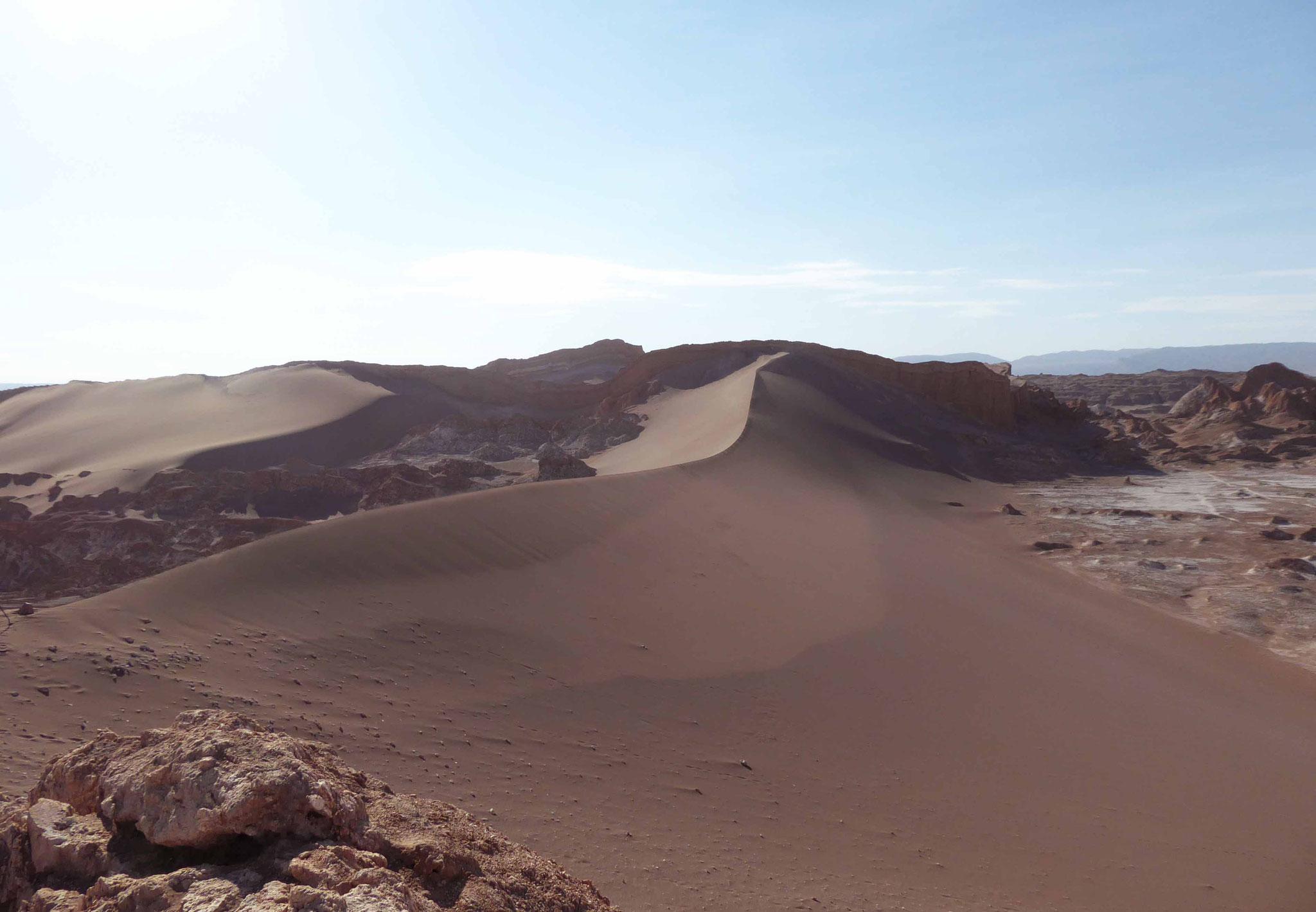 Au point culminant de la duna mayor
