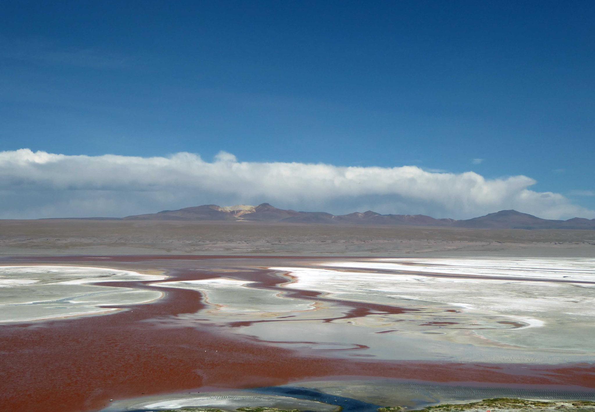 La remarquable Laguna Colorada (4278 m)