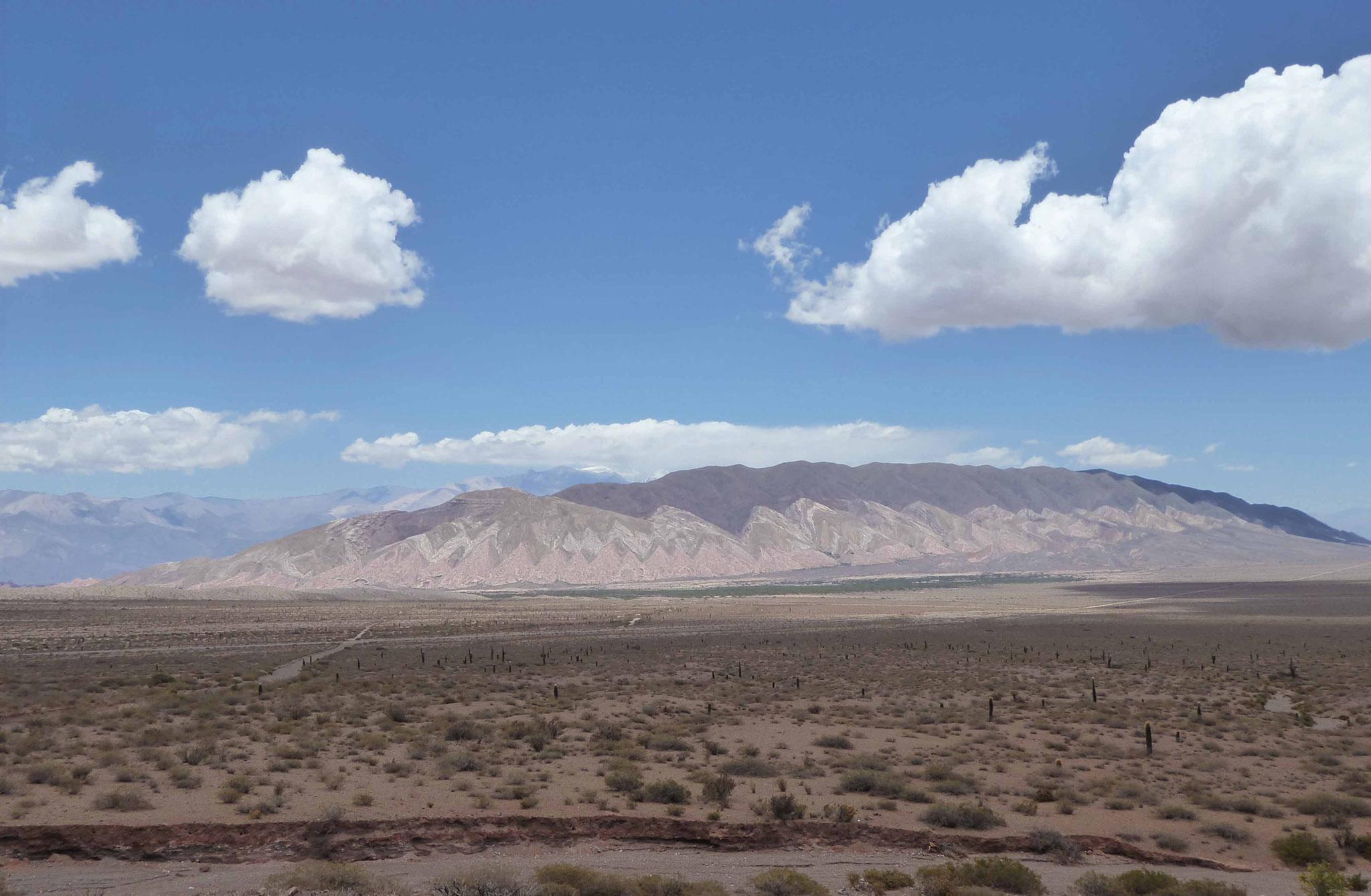 El Cerro Tin Tin sur le chemin de l'Inca dans le Parc de los Cardones