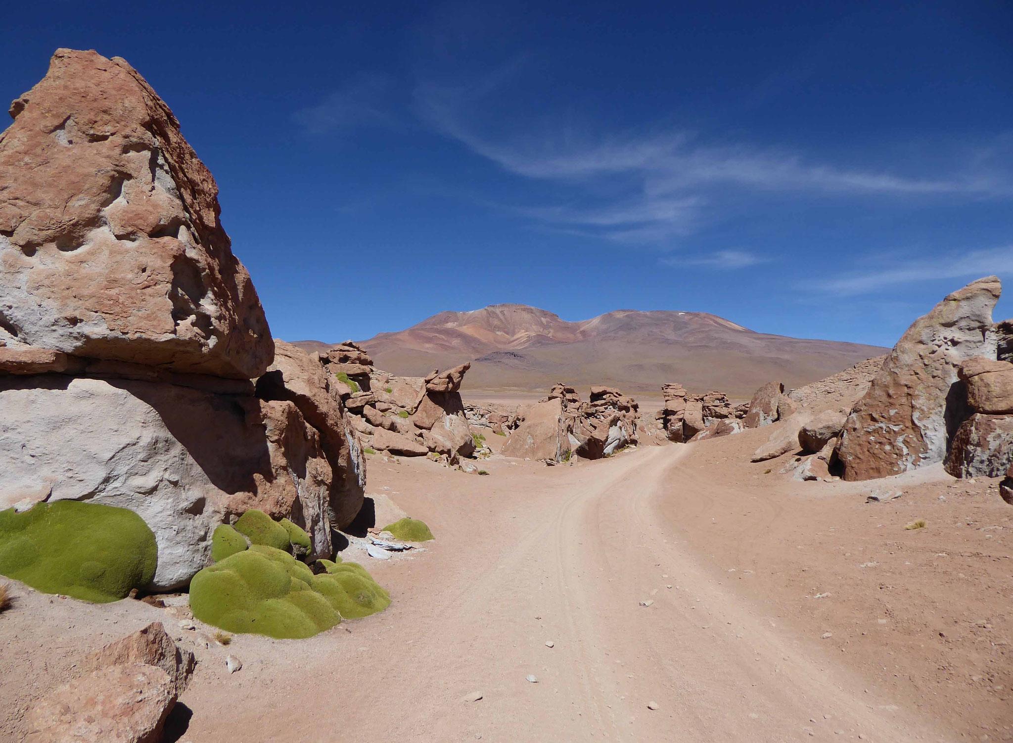 La route de l'Inca, un bon repère à suivre