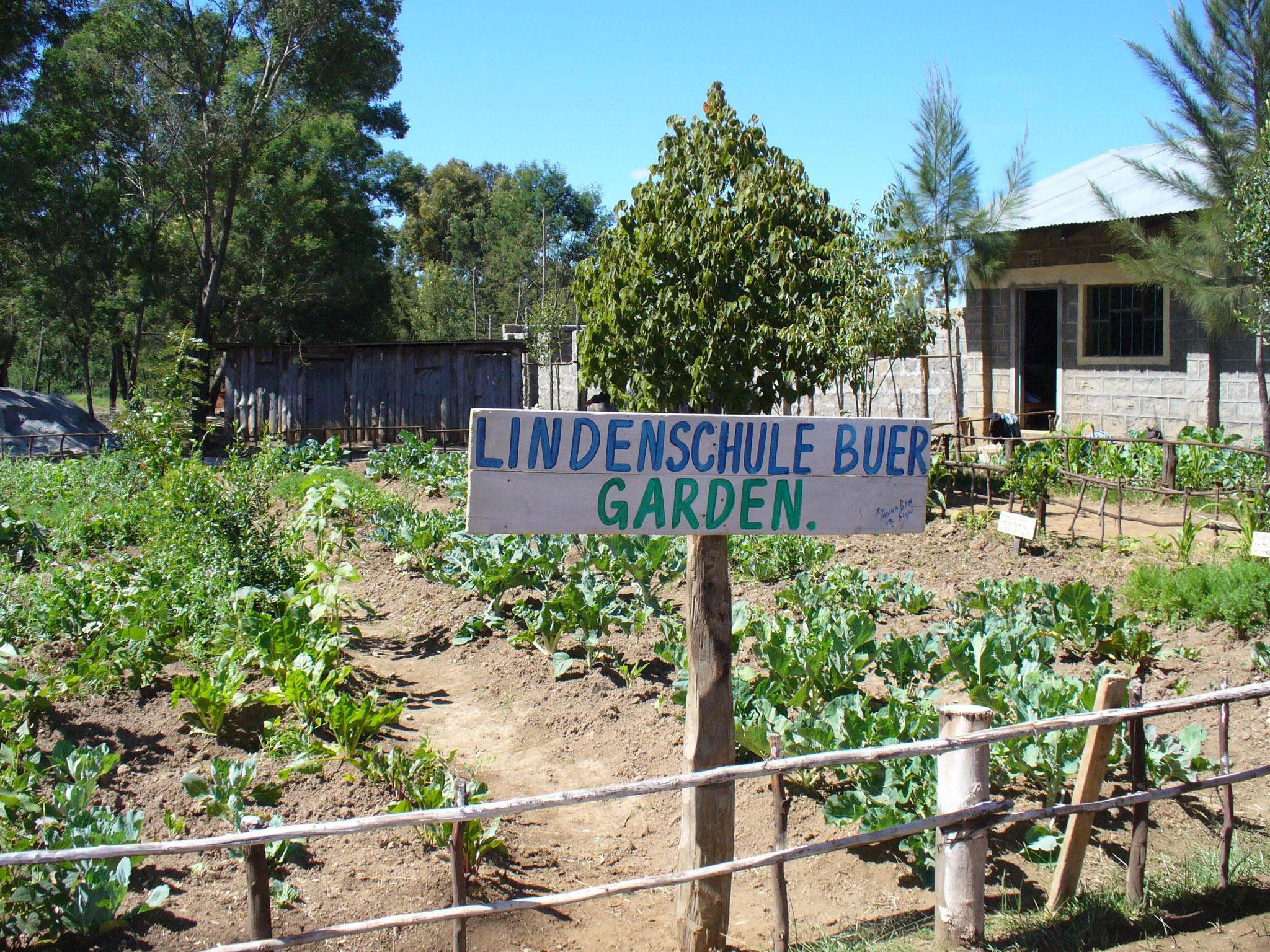 Der Lindenschule-Buer-garden auf dem neuen Innenhof