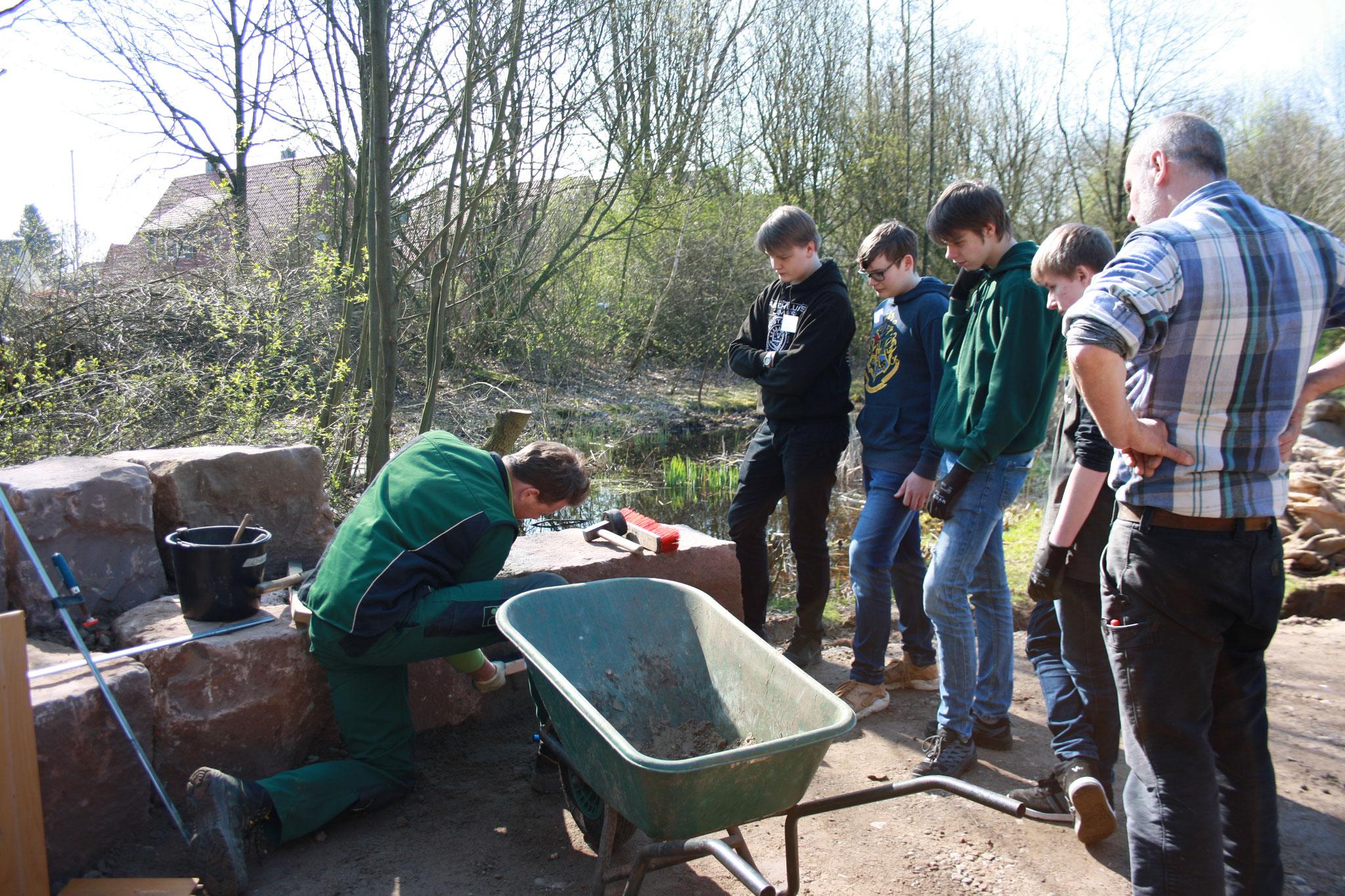 Fachmännische Ratschläge beim Bau des Grünen Klassenzimmers