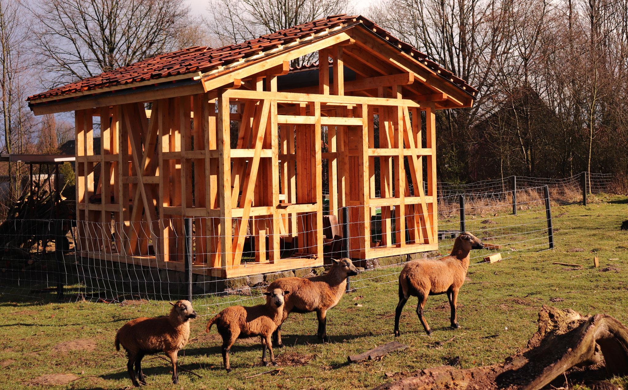Fachwerk-Konstruktion des Insekten- und Bienenhauses