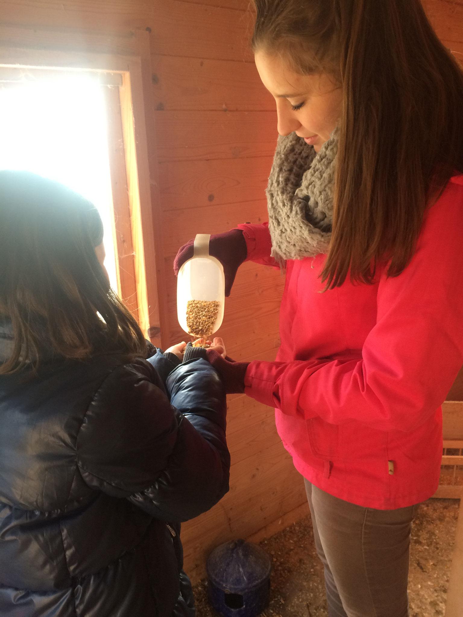 Fütterung der Schul-Tiere mit den FöJ-lerinnen