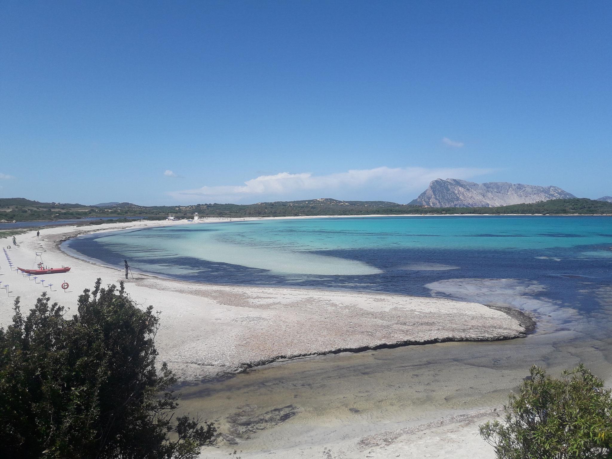 aktiver Segeltörn  mit Skipper mitsegeln Sardinien und Korsika