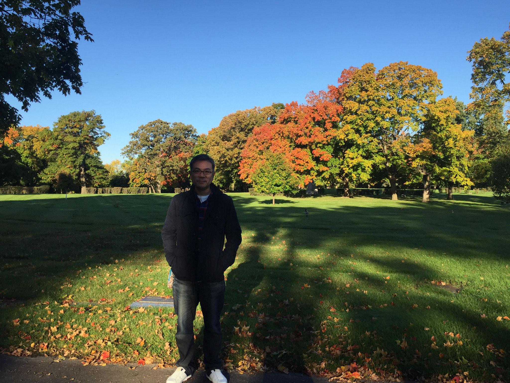 紅葉が進んだ墓地公園(ミネソタ州)