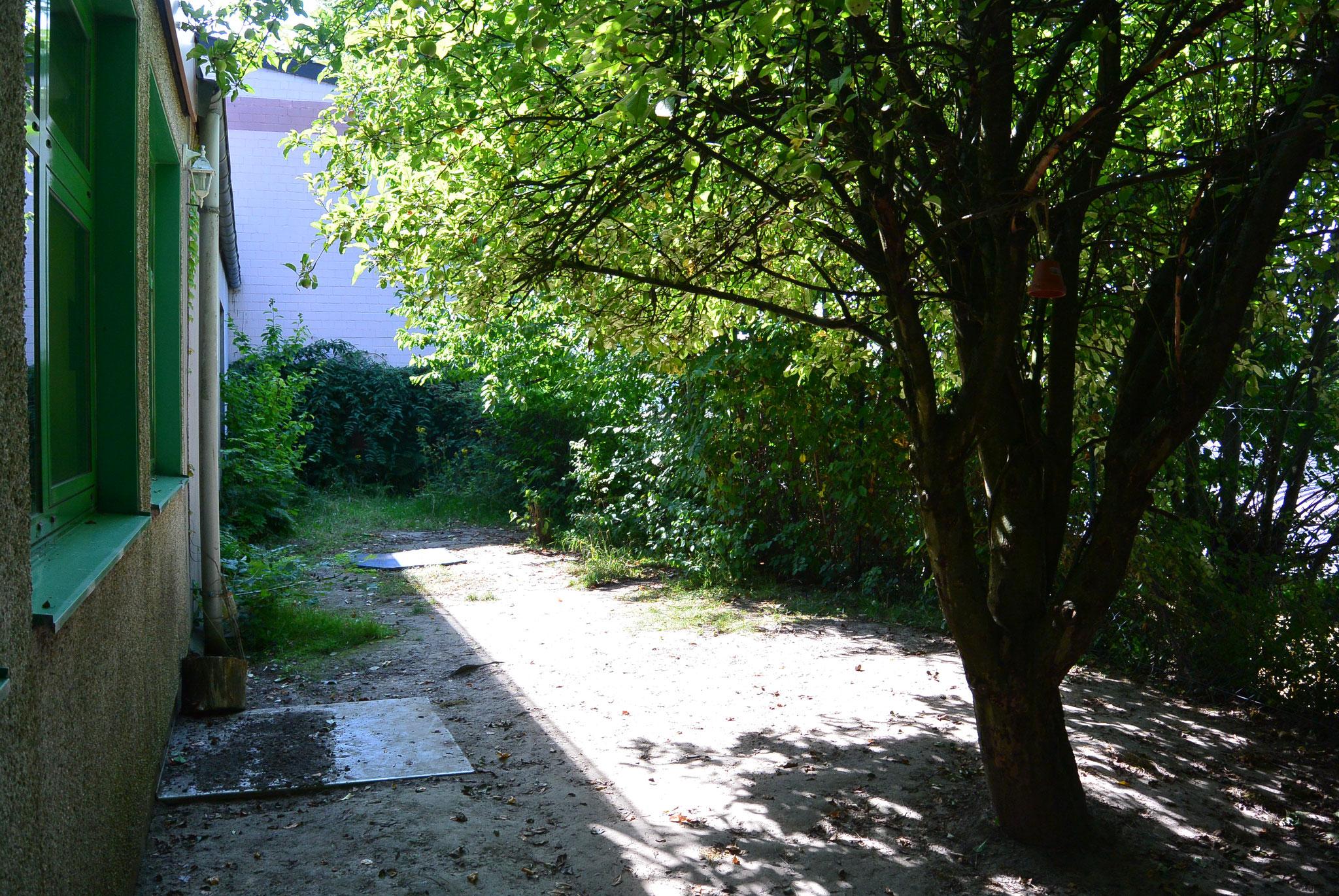 Der ehemalige Kindergarten Garten