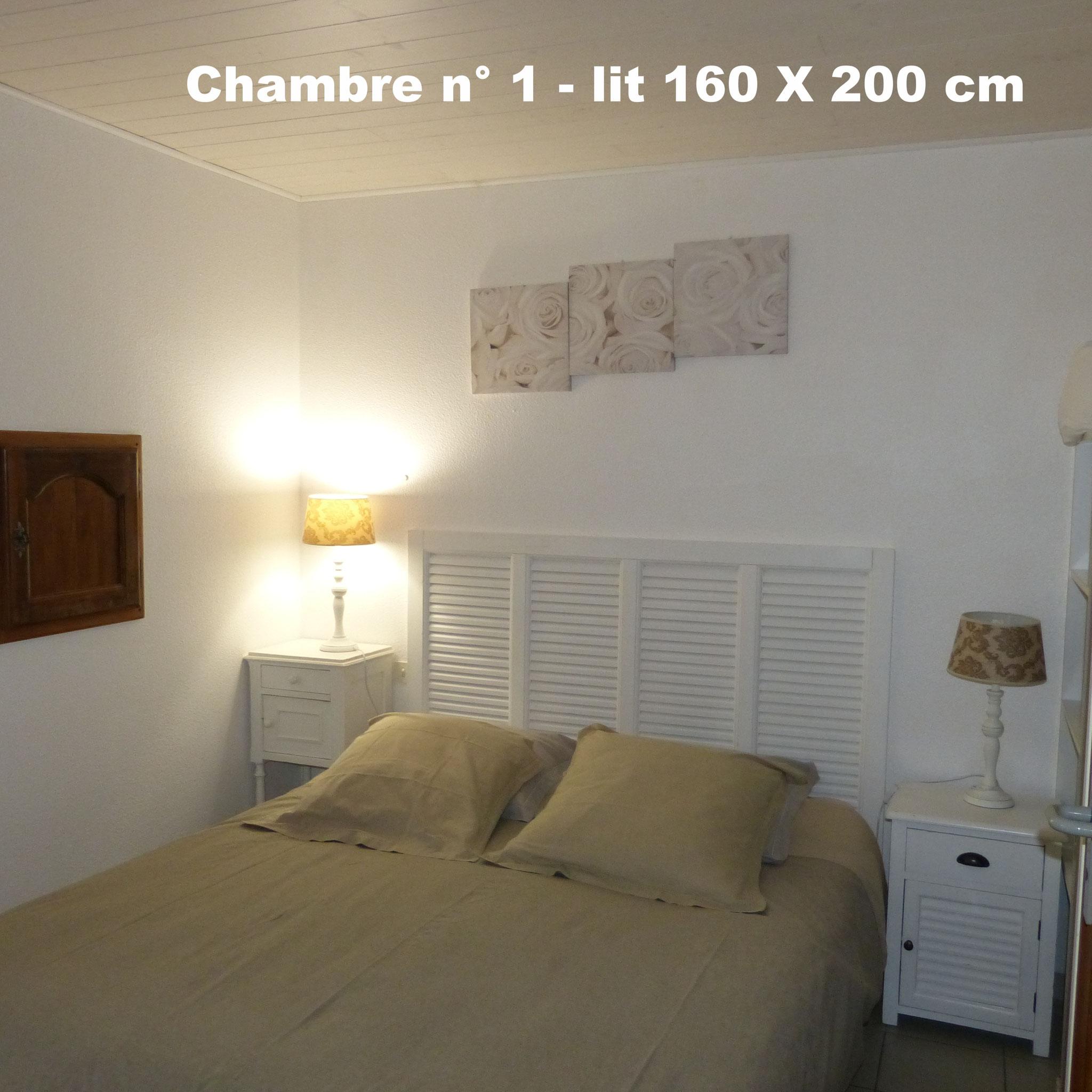Chambre n° 1 - 1 lit 160  SUD
