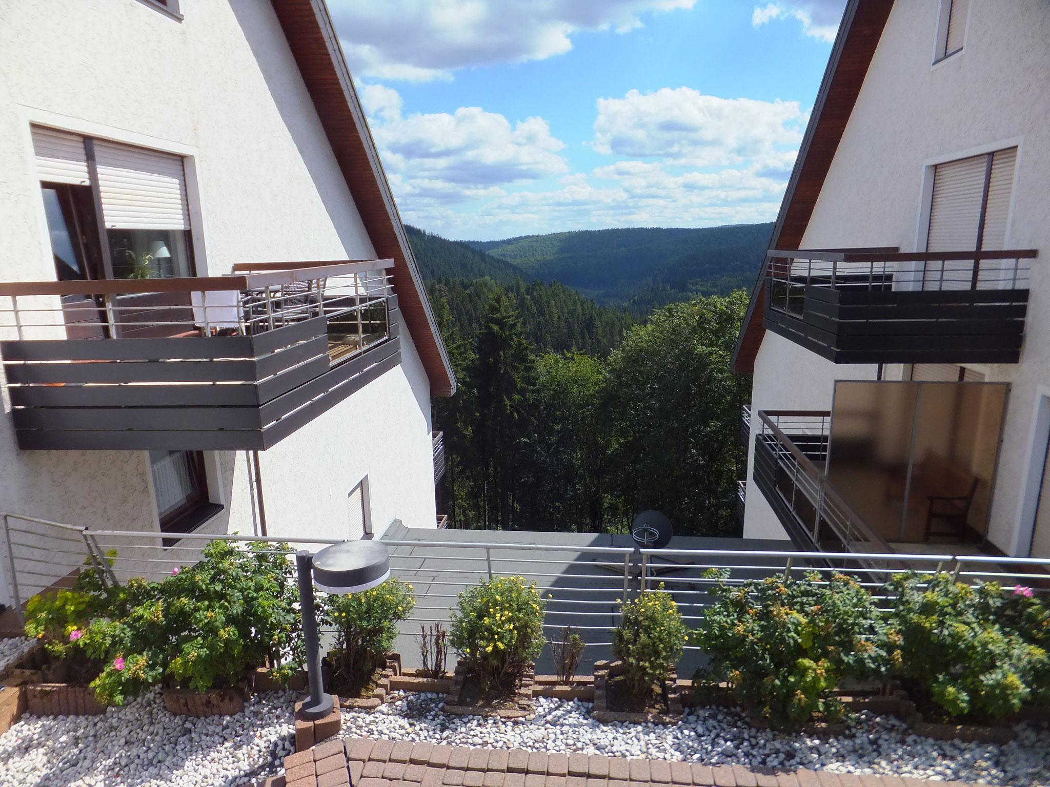 Balkon Ansicht Winterberger Wald