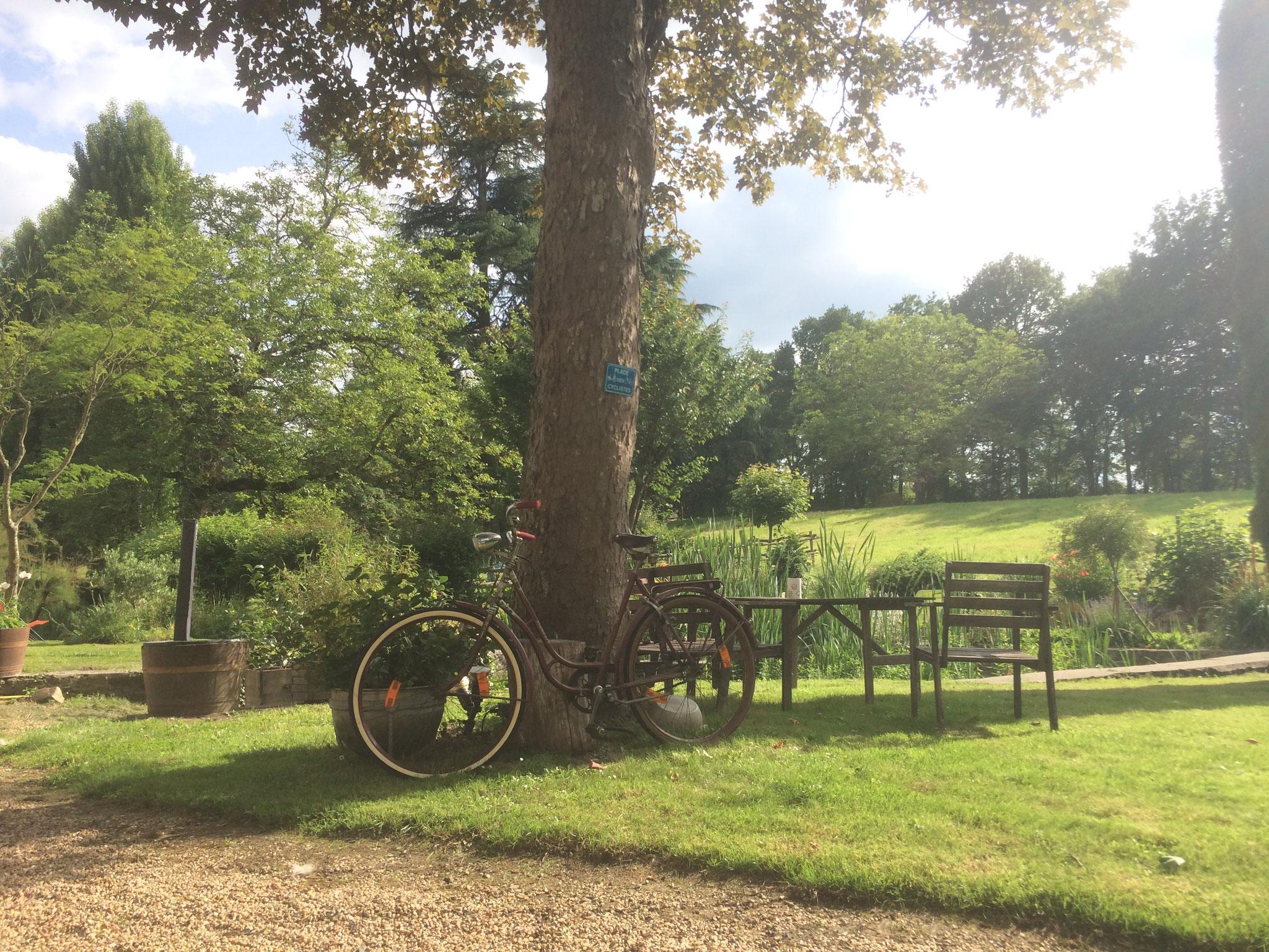Le vélo en Anjou - en mode vintage, VTC, VTT ou vélo de route, vous êtes tous les bienvenues !