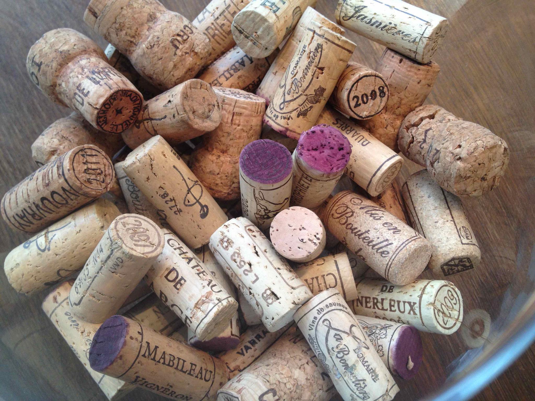 L'Anjou est une terre d'émotions viticoles - vivez l'oenotourisme en Anjou !