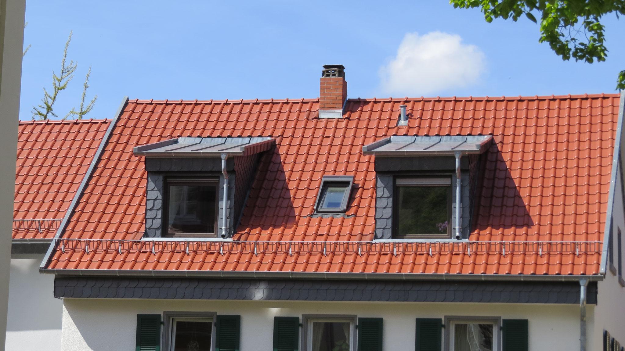 Das Dach ist nun im Winter schön warm und wenn es regnet trocken