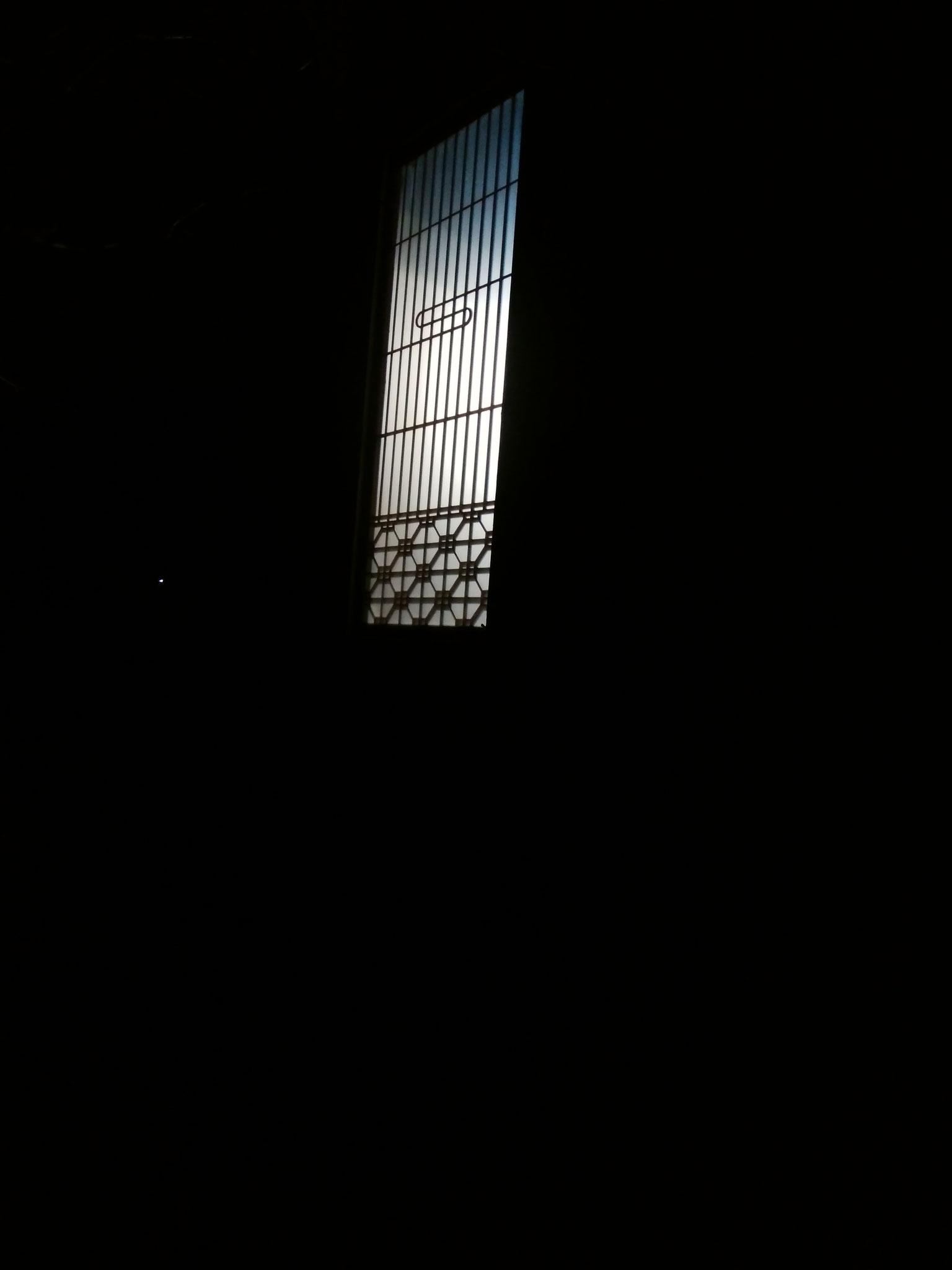 夜に浮かび上がる影。