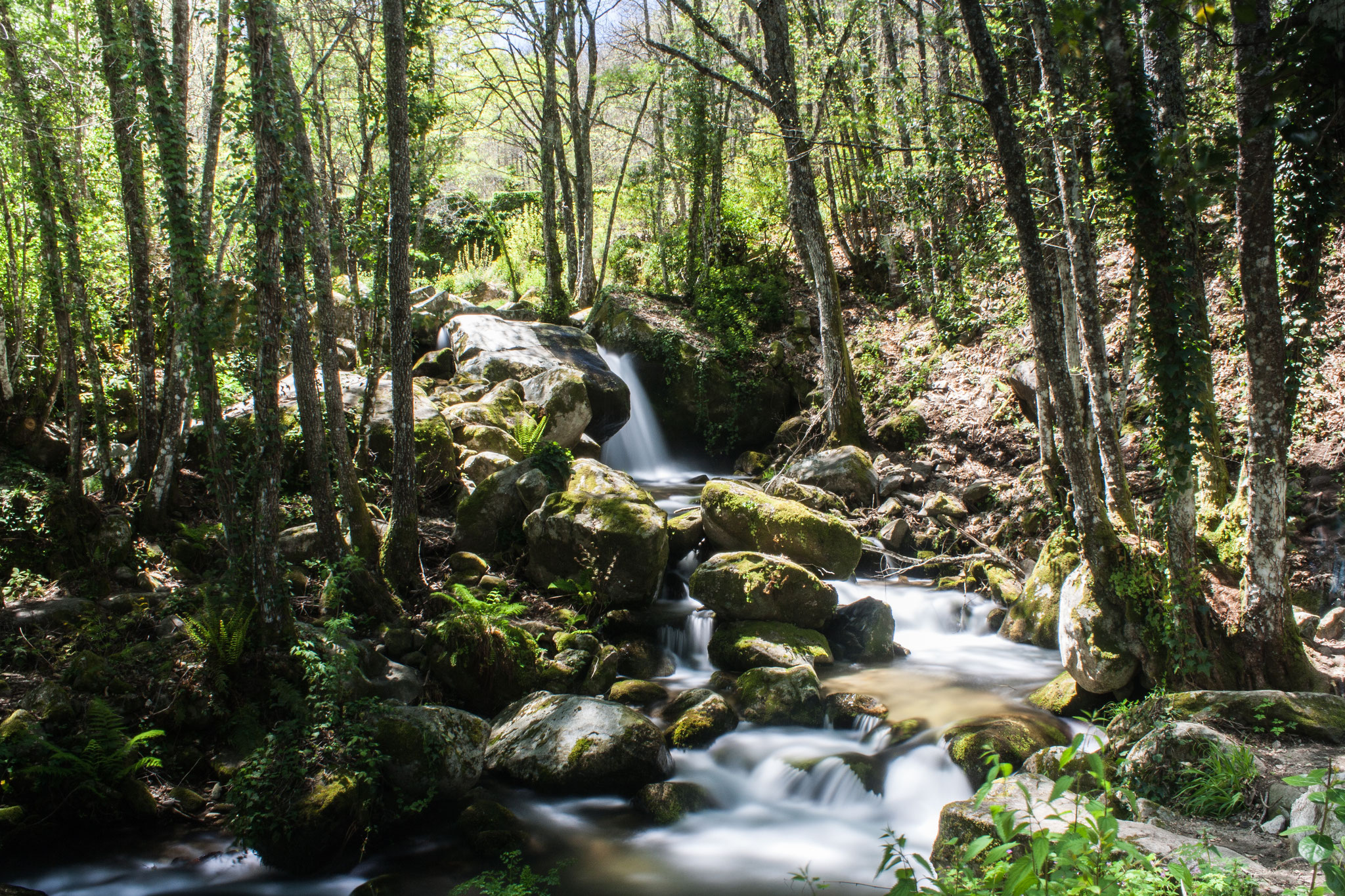 Cascada del Camino del Agua. Sierra de Francia. Salamanca