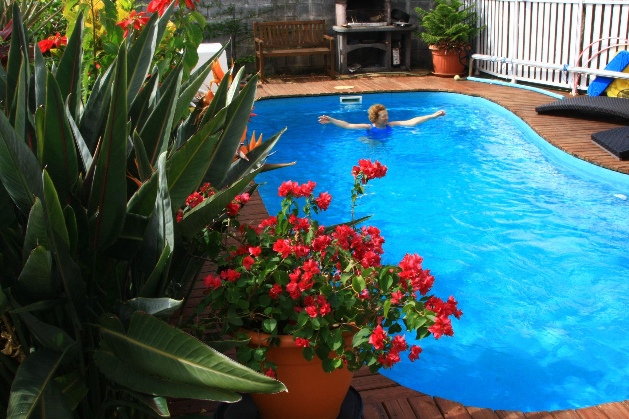 la piscine en libre accès